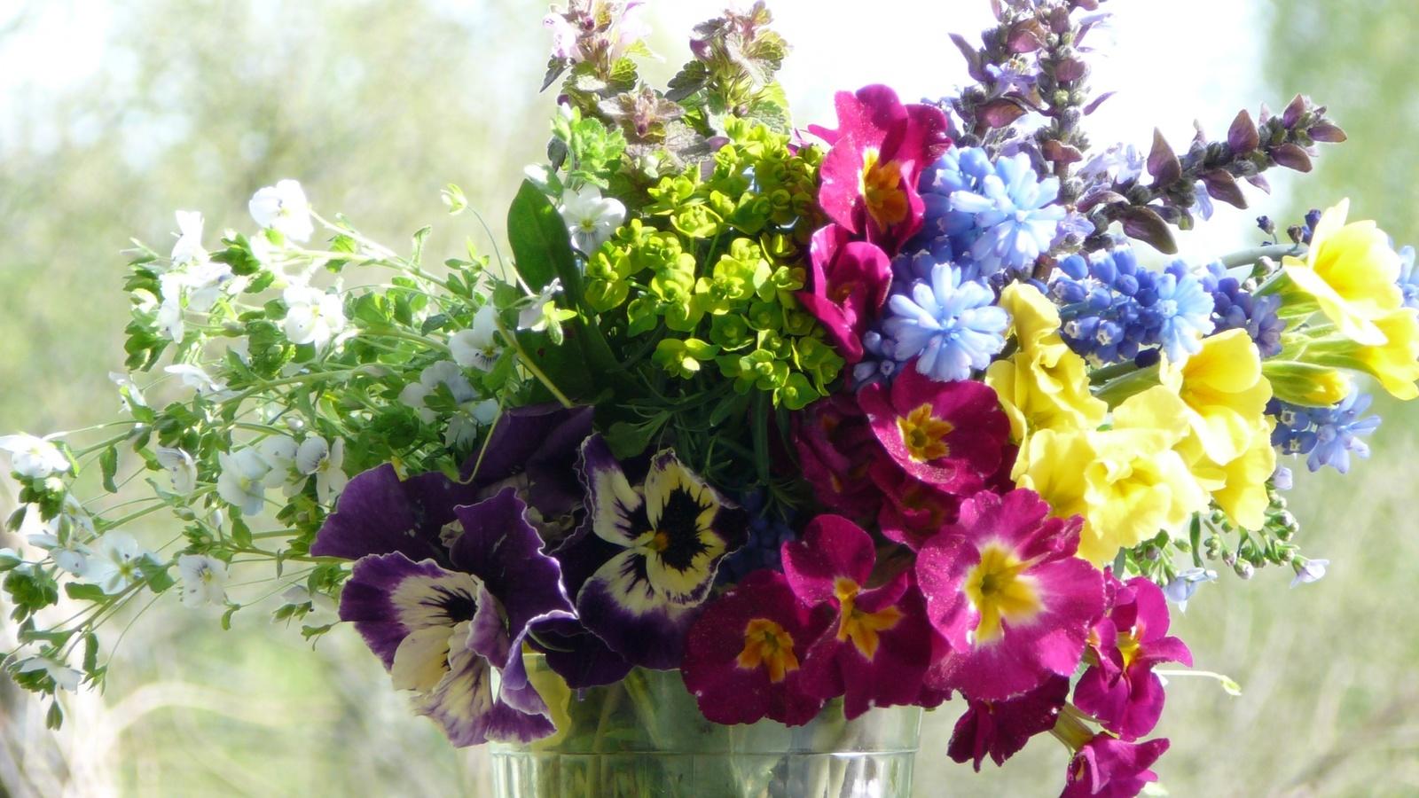 http://www.nastol.com.ua/download.php?img=201106/1600x900/nastol.com.ua-6135.jpg