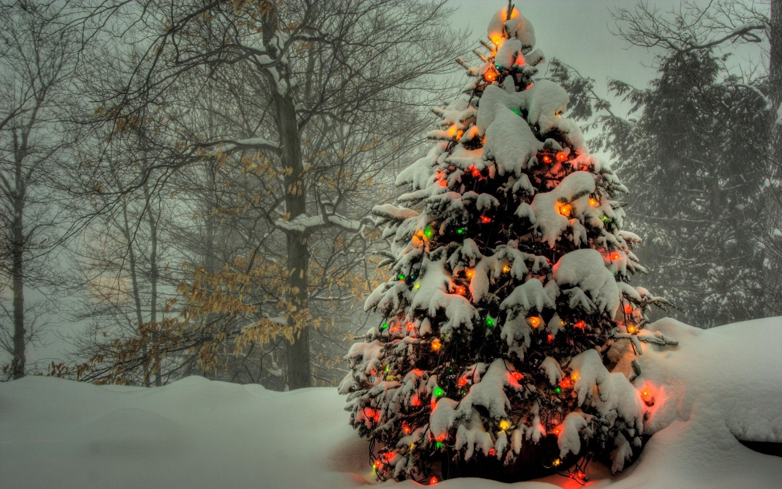 картинки для рабочего стола рождество зима основания
