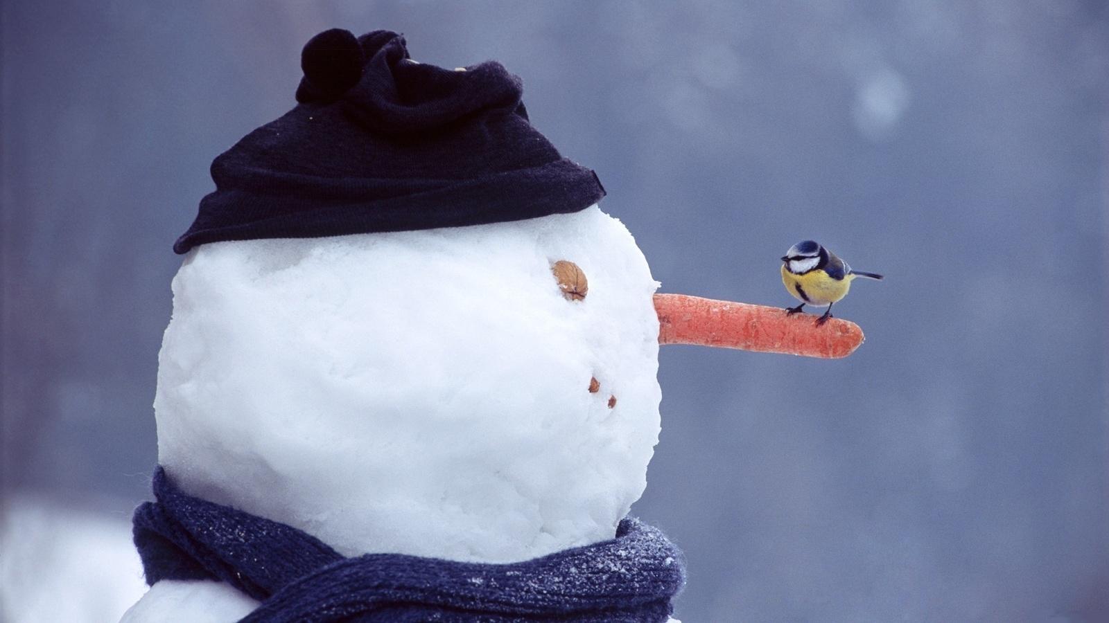 Прикольны снежные картинки