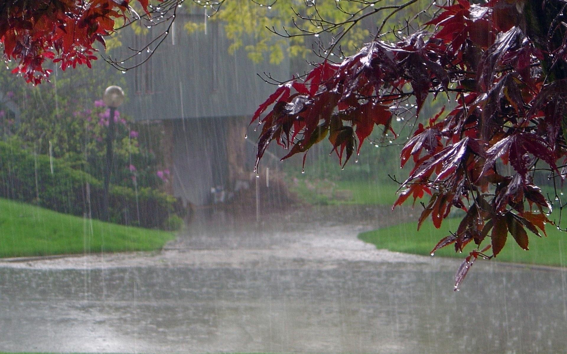 Дождливые картинки осени на рабочий стол