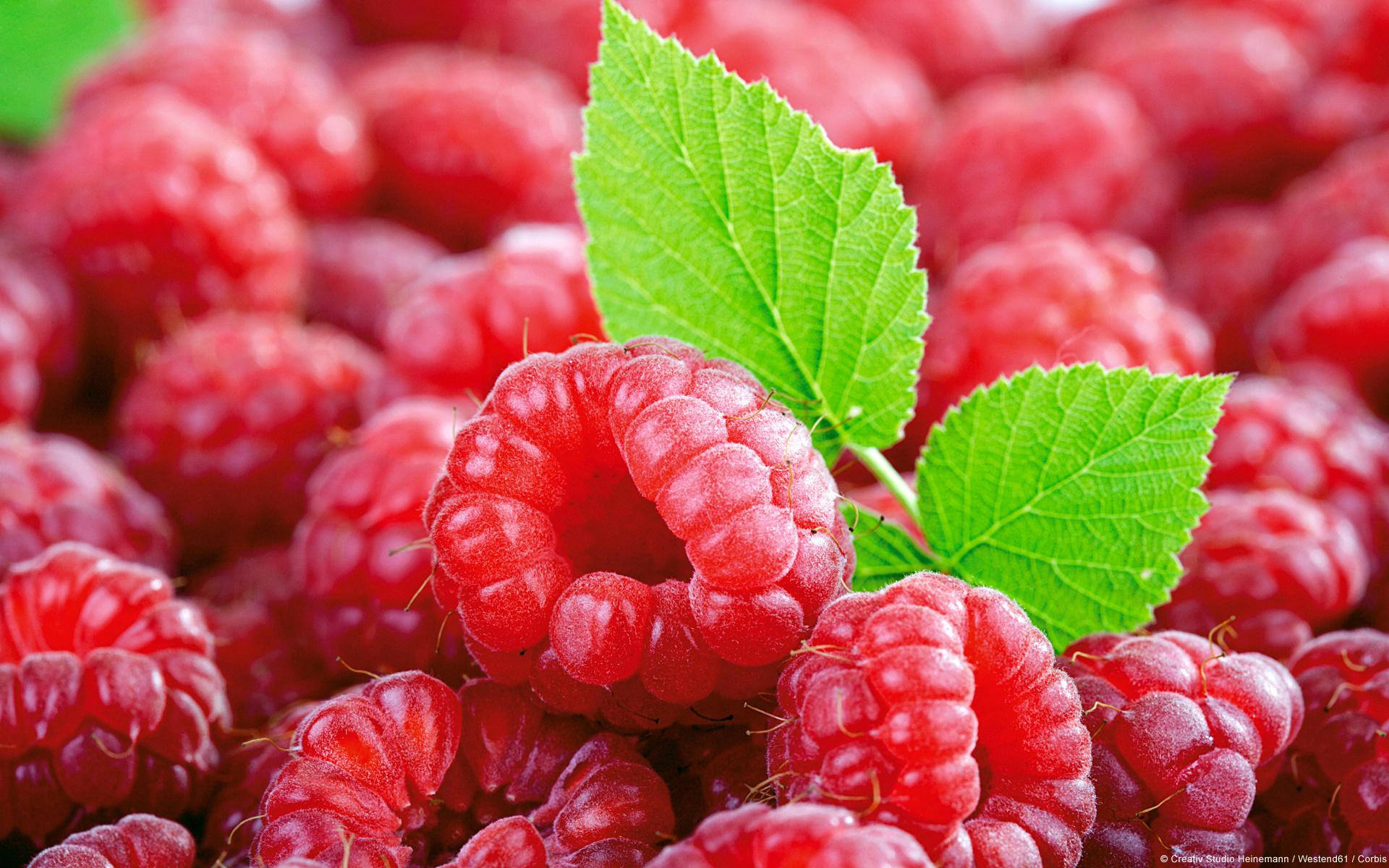 картинки с ягодами очень красивые изготовить такую доску