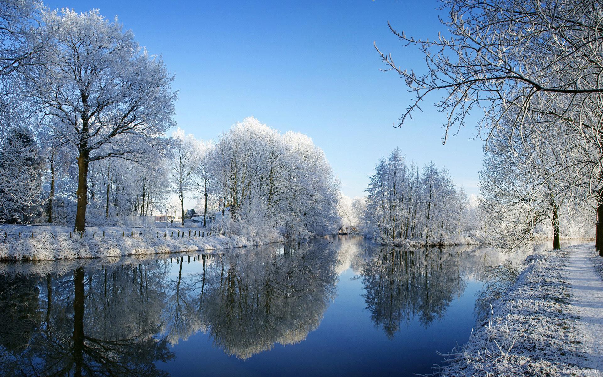 картинки для телефона красивые природа зима можно