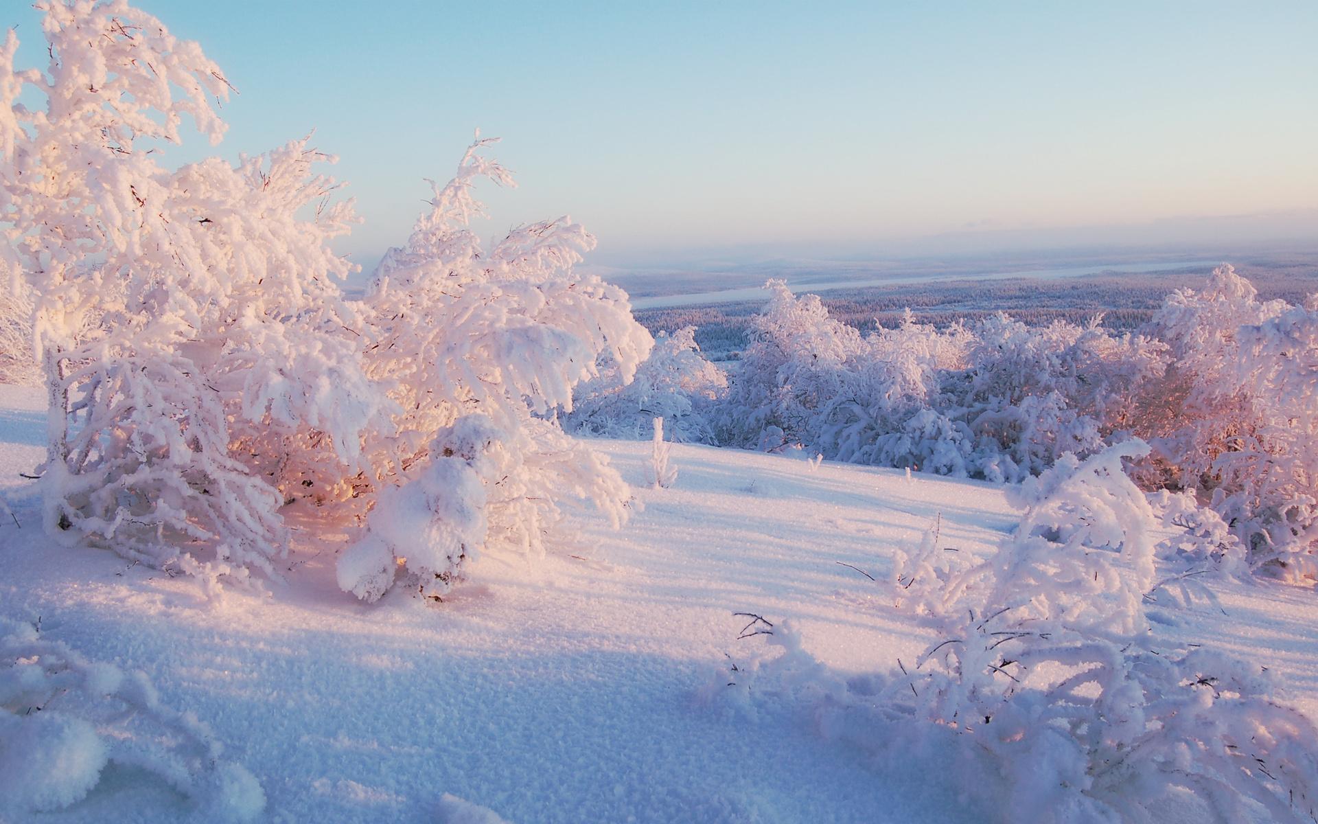 картинки зимняя пора год праздник