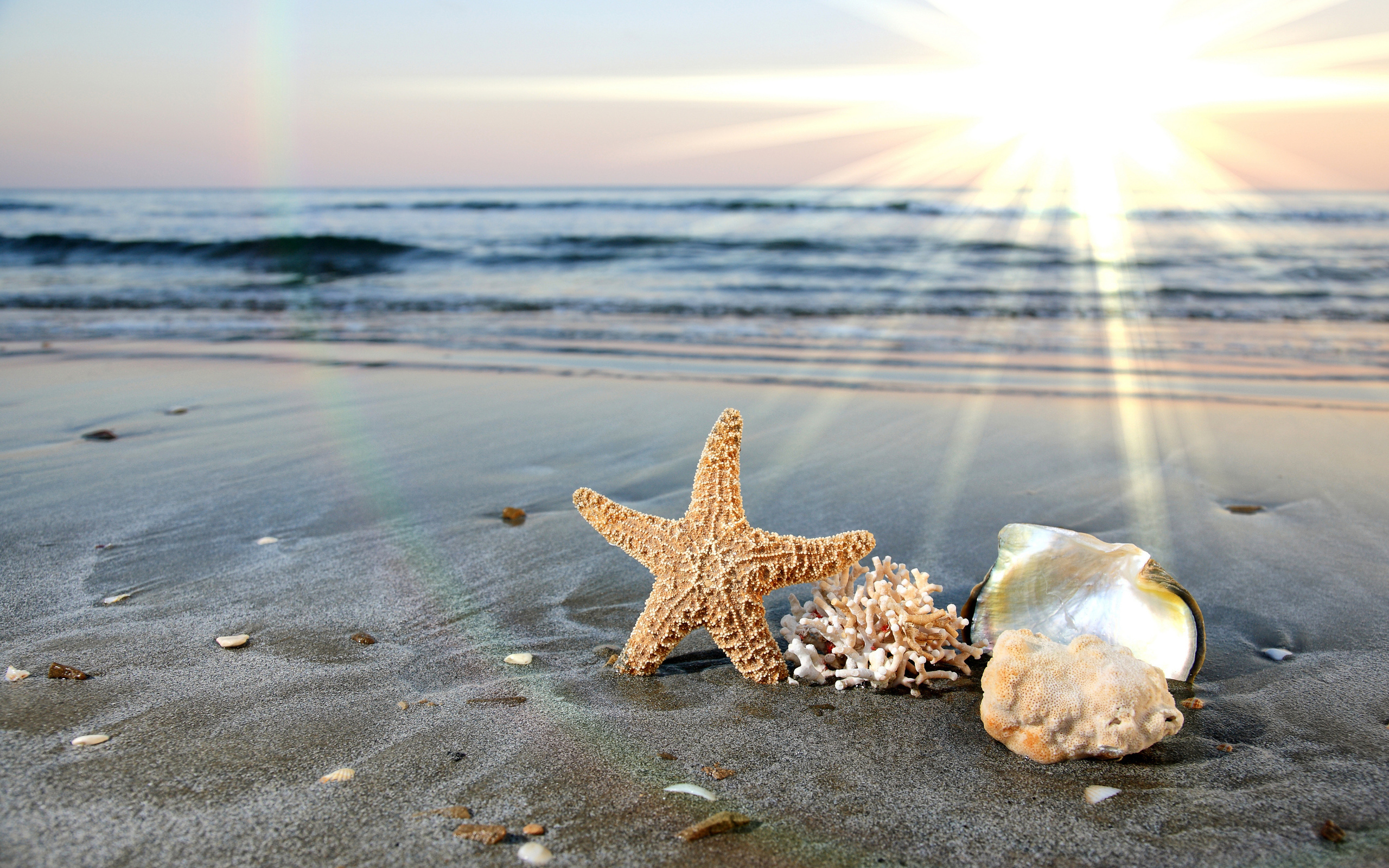 День моря картинки красивые