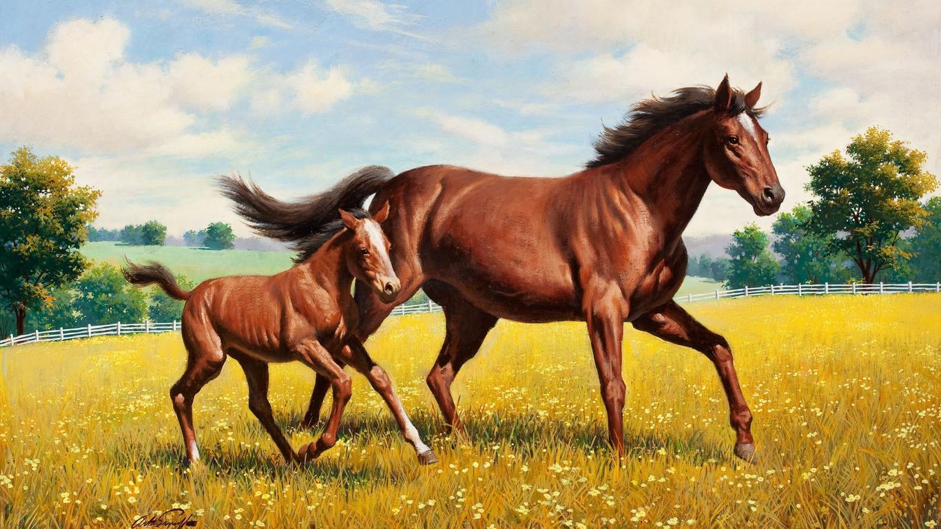В картинках лошадей, открытки