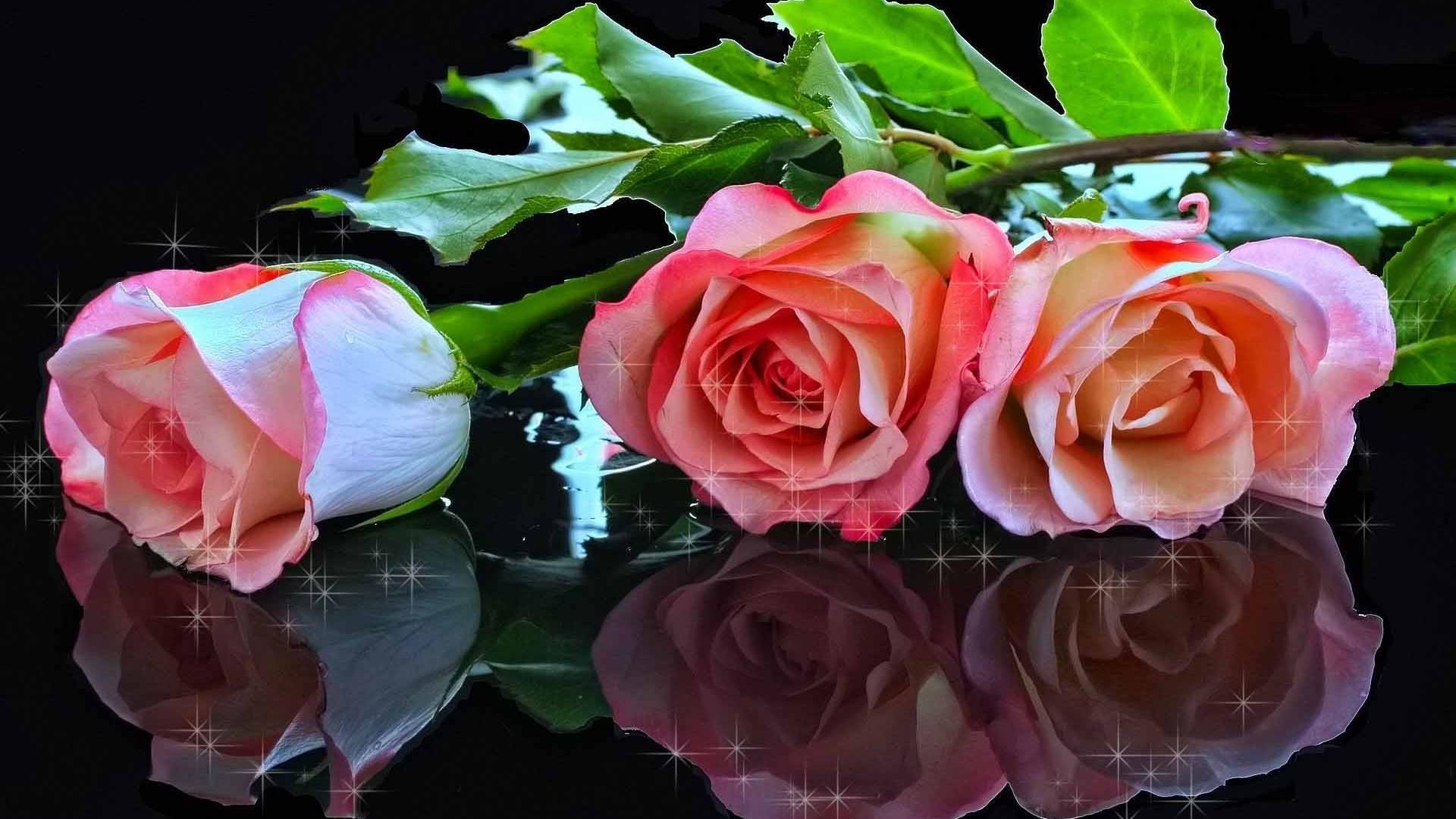 Люблю вас мои друзья картинки в цветах