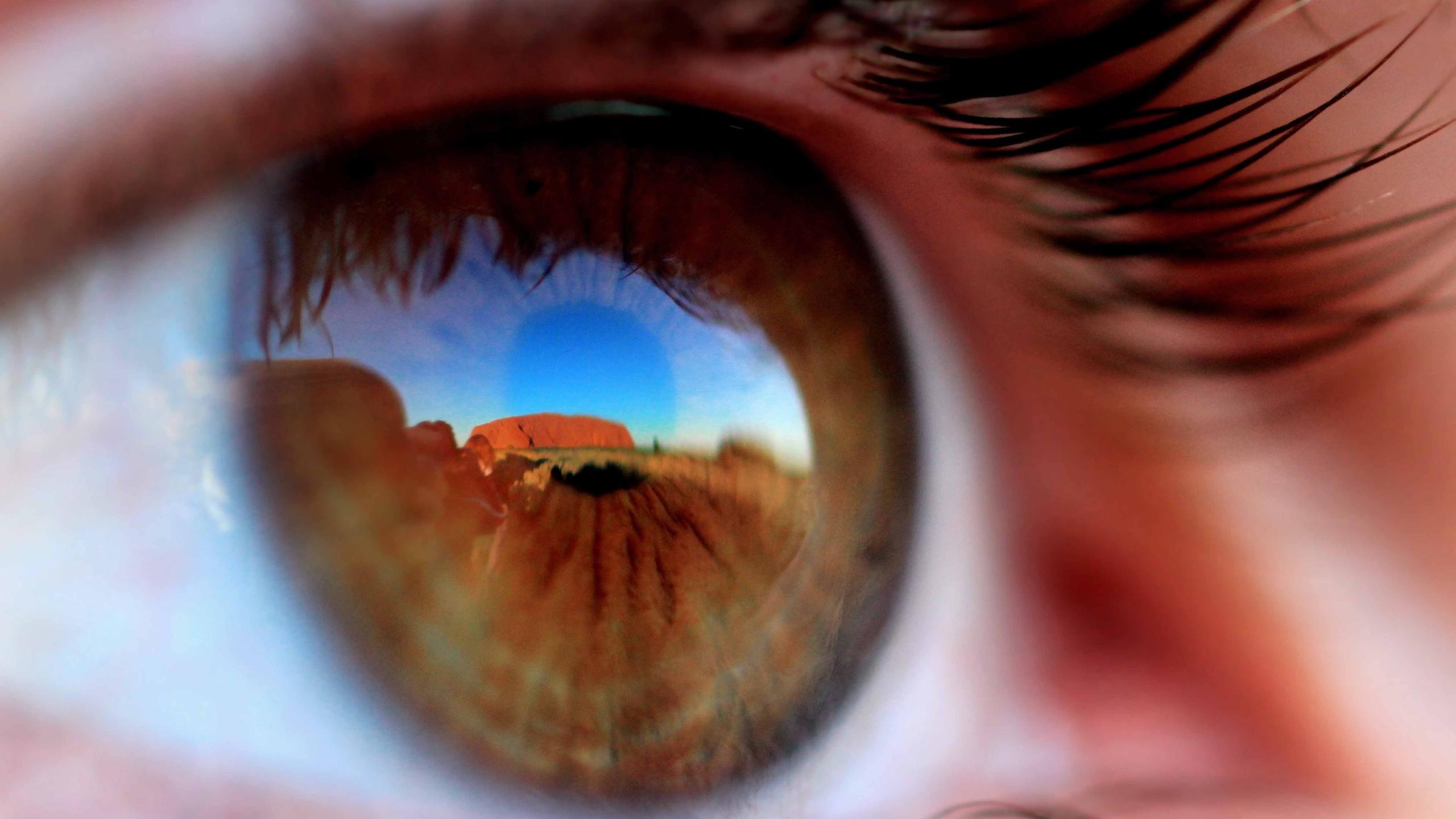 природа глазами человека картинки американские военнослужащие