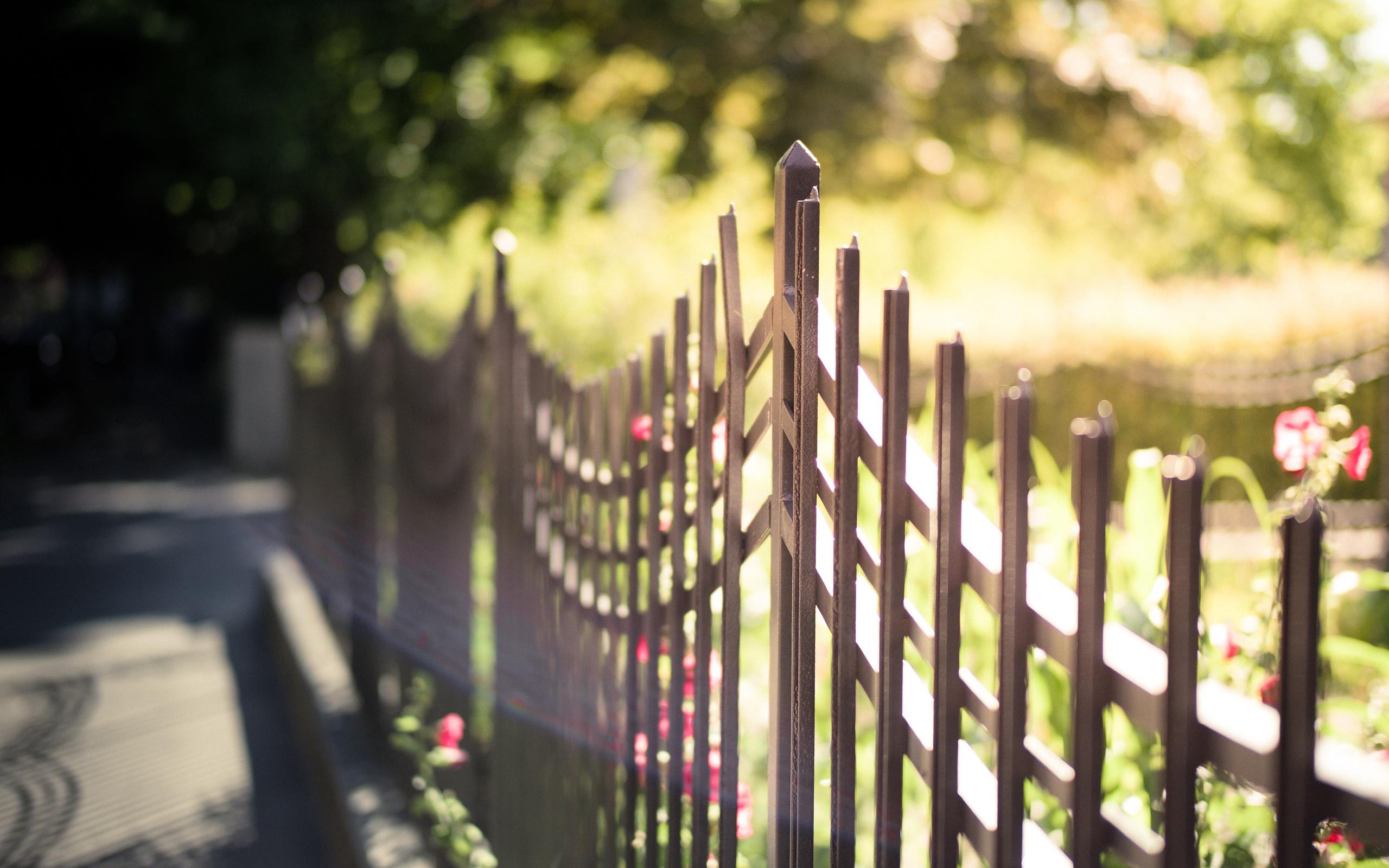 Картинка парк с забором