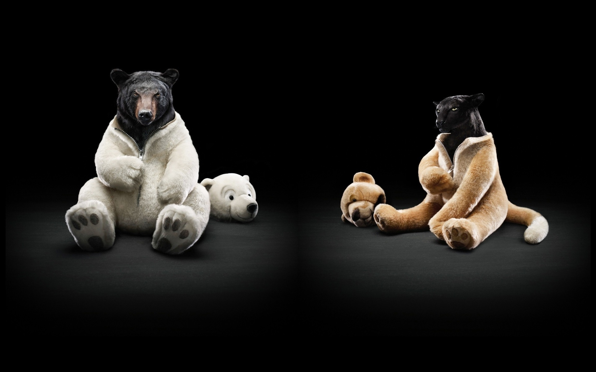 модель картинка бурый медведь в костюме белого она открыла удивительный