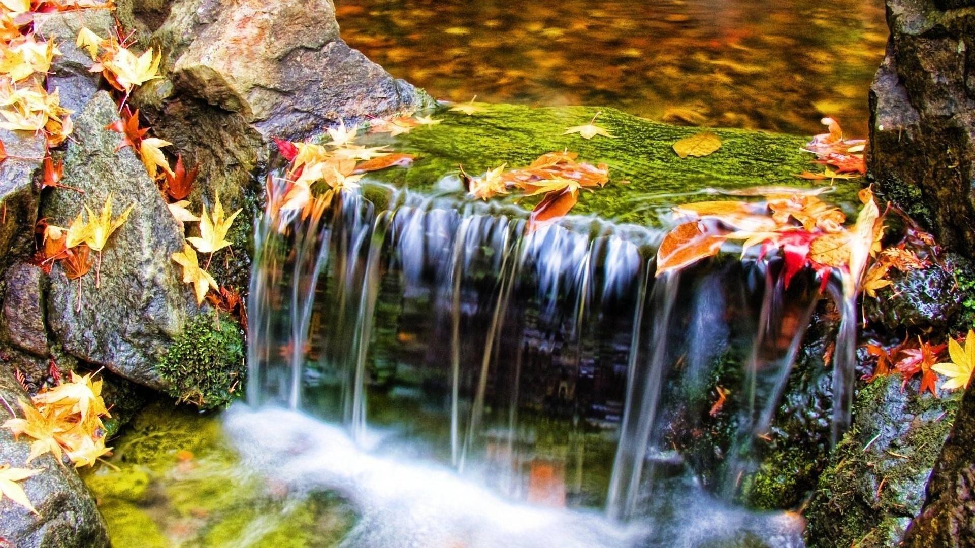 другие доброе утро картинки красивые осенние водопад рассада подрастет
