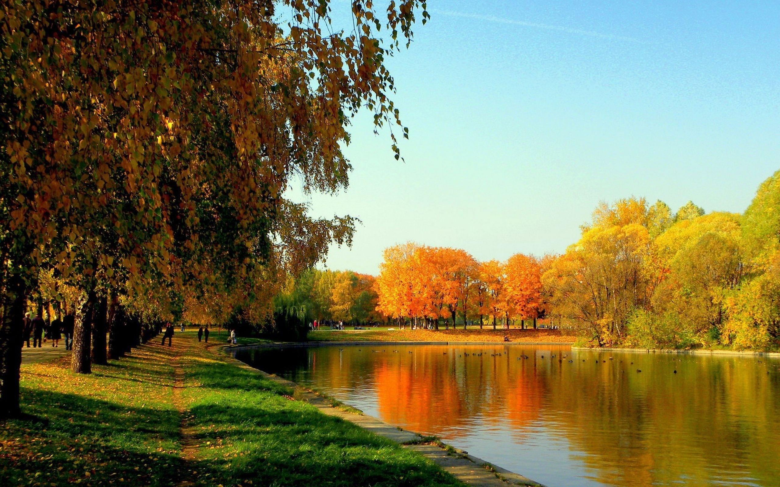 Золотая осень в парках картинки