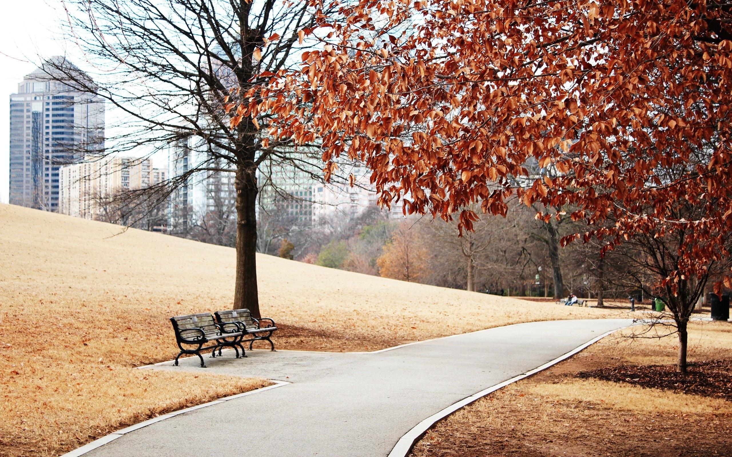 картинки природа улицы города