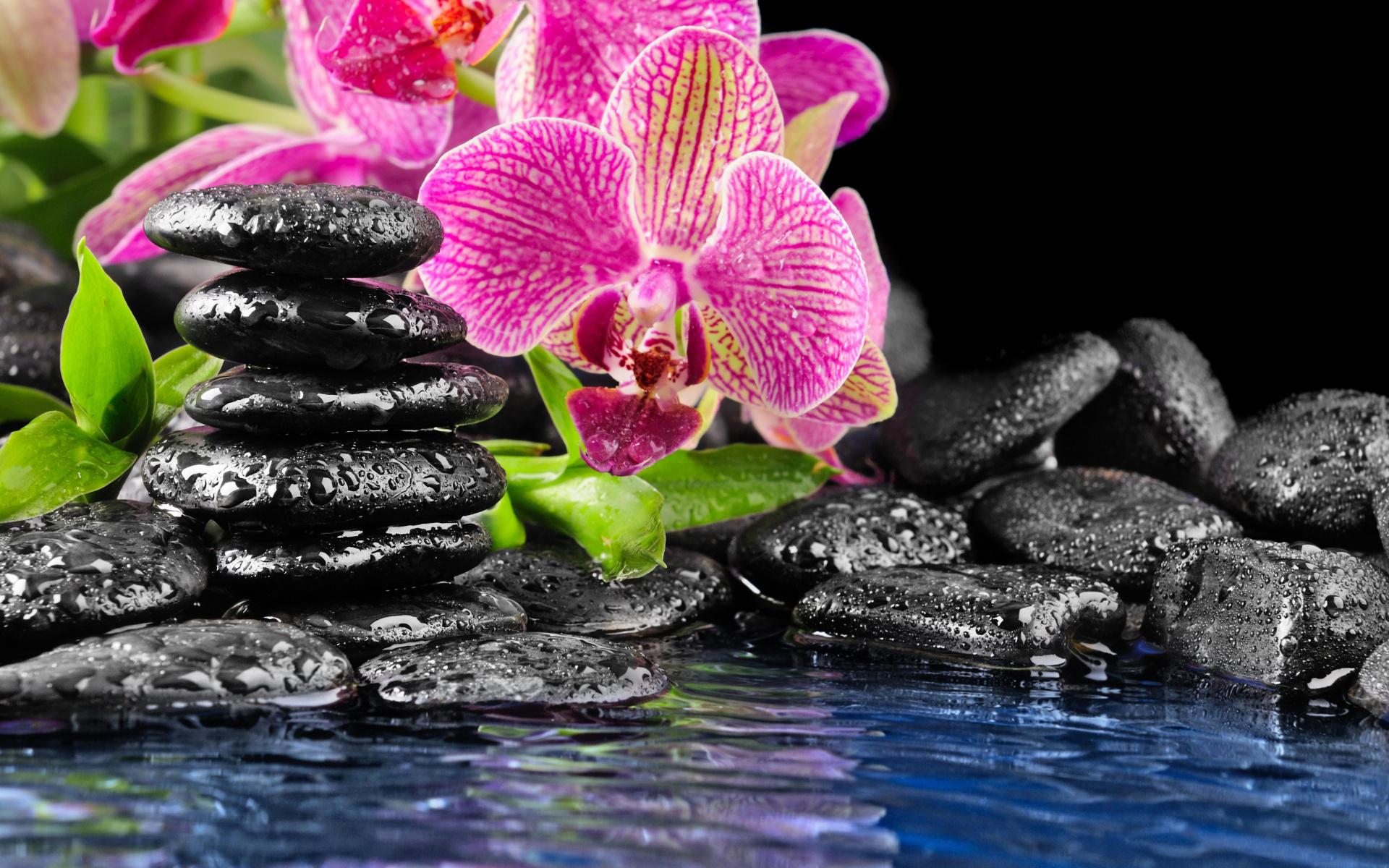 которые картинки на мобильный разное водохранилище рогунской гэс