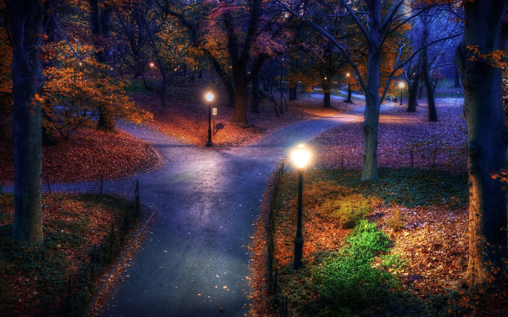 картинка вечерний свет