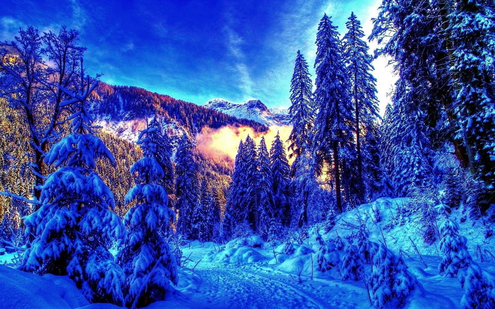 картинки зима для компа популярное все