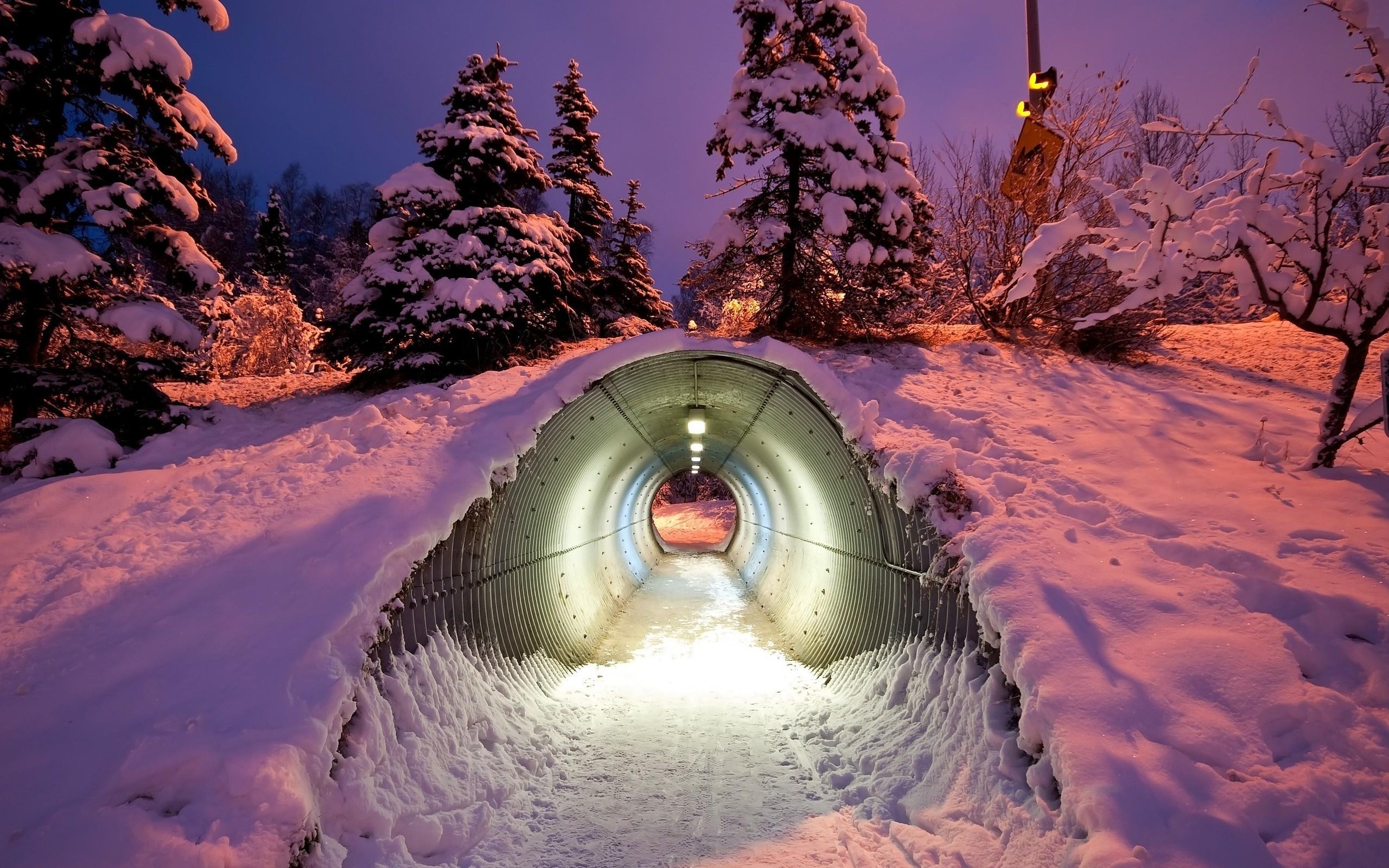 Зимы картинки прикольные