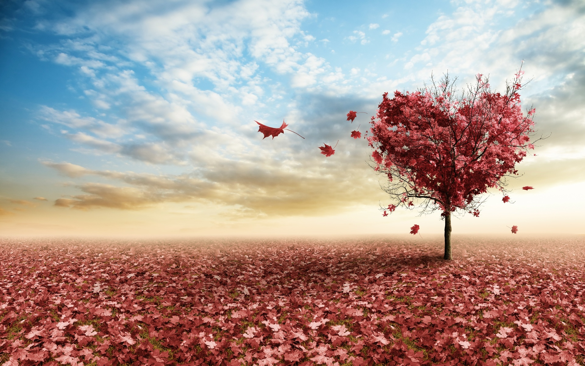Любовь и осень картинки на рабочий стол