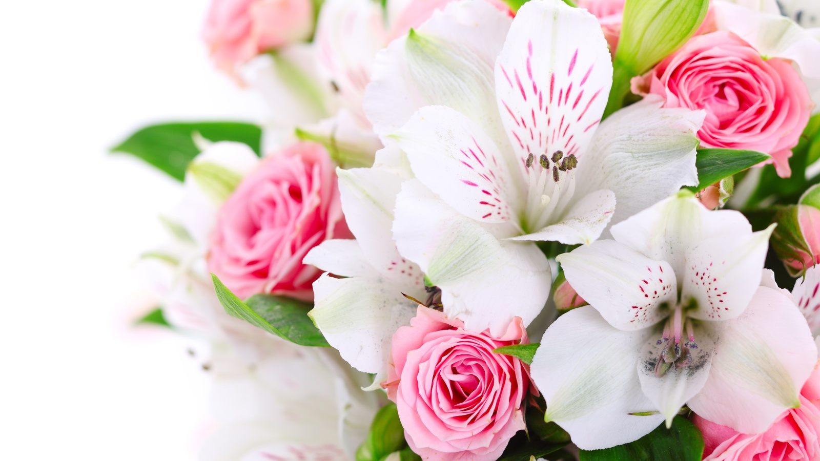 Картинка шикарной женщине букет цветов, фото