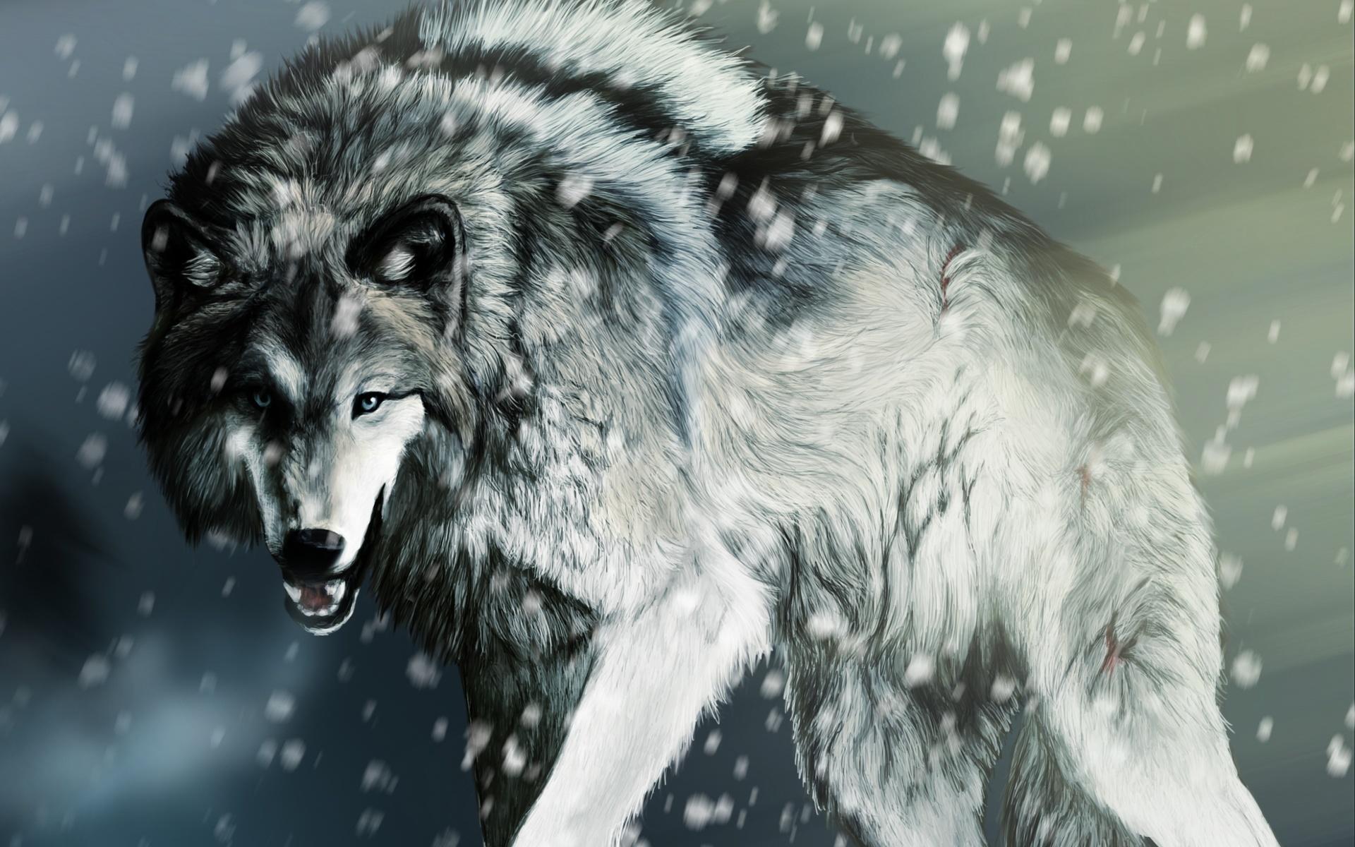 Картинка загнанный волк