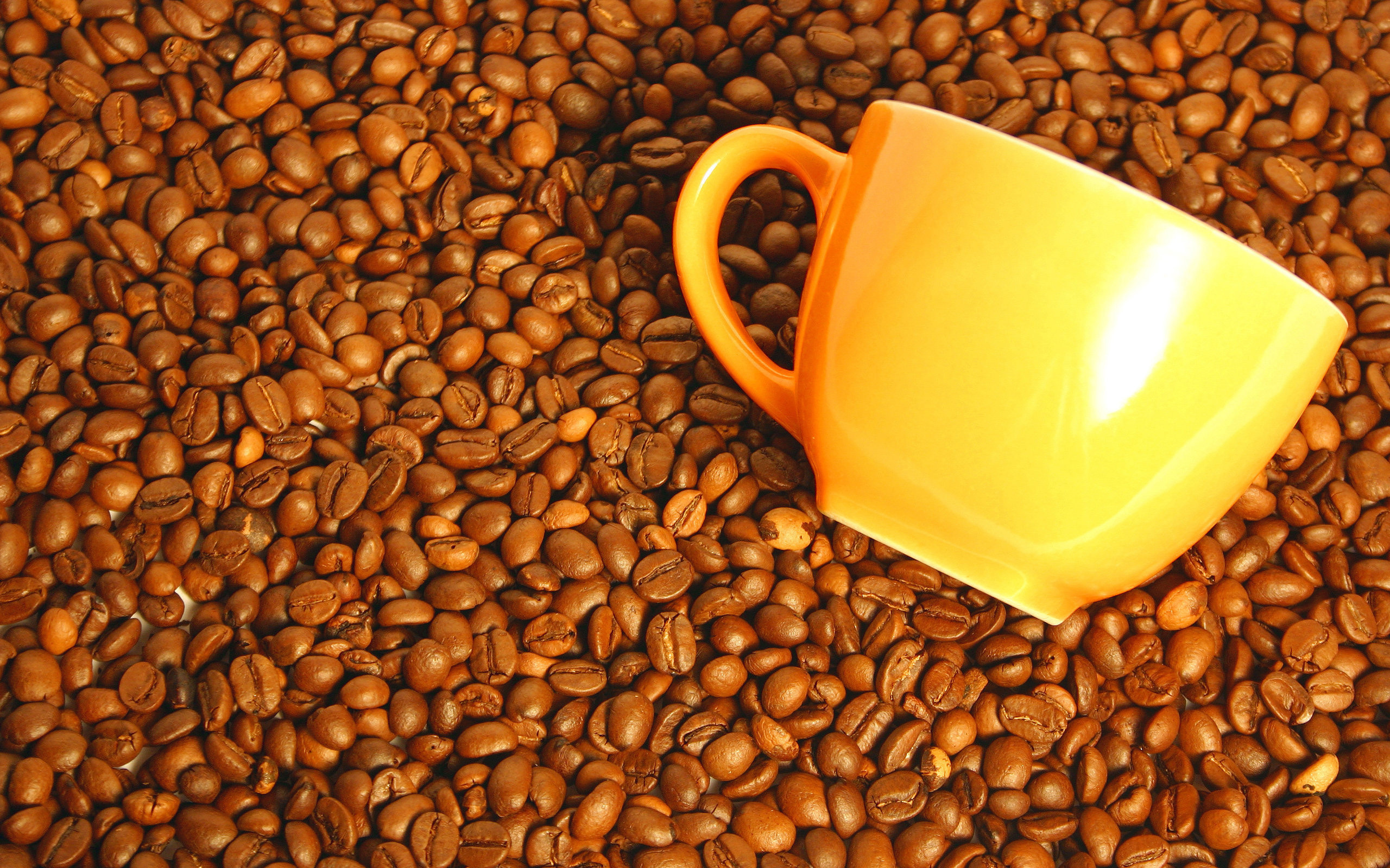 картинка кофе зерна для рабочего стола это демократичное