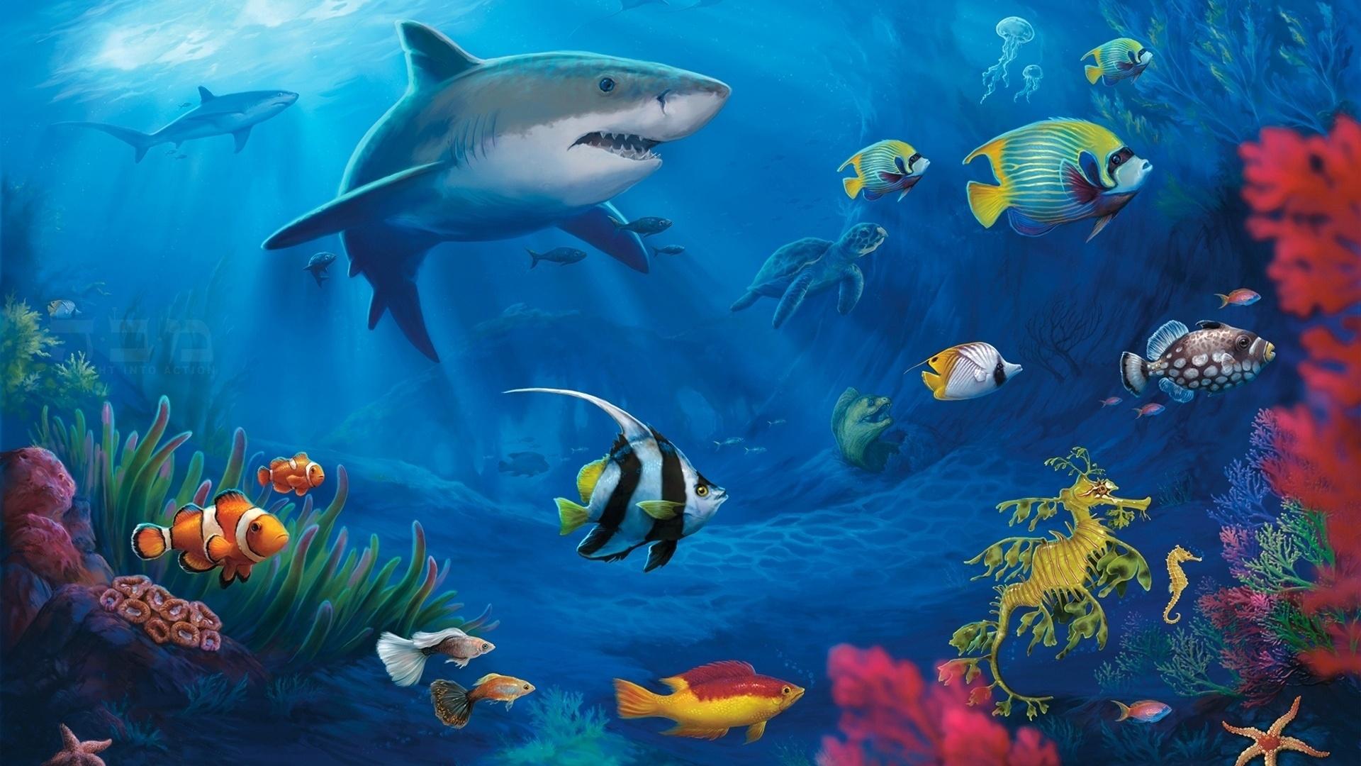 Для, картинки подводный мир на рабочий стол