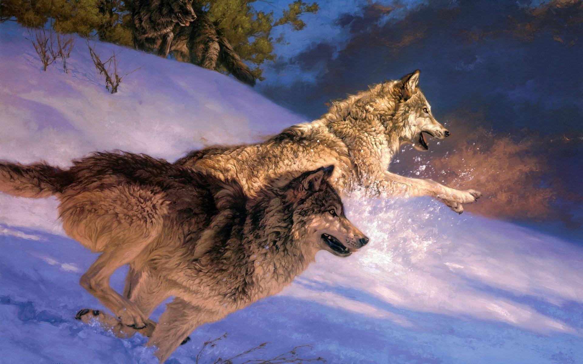 дамам картинки на телефон дикие волки овчарка сторожевая
