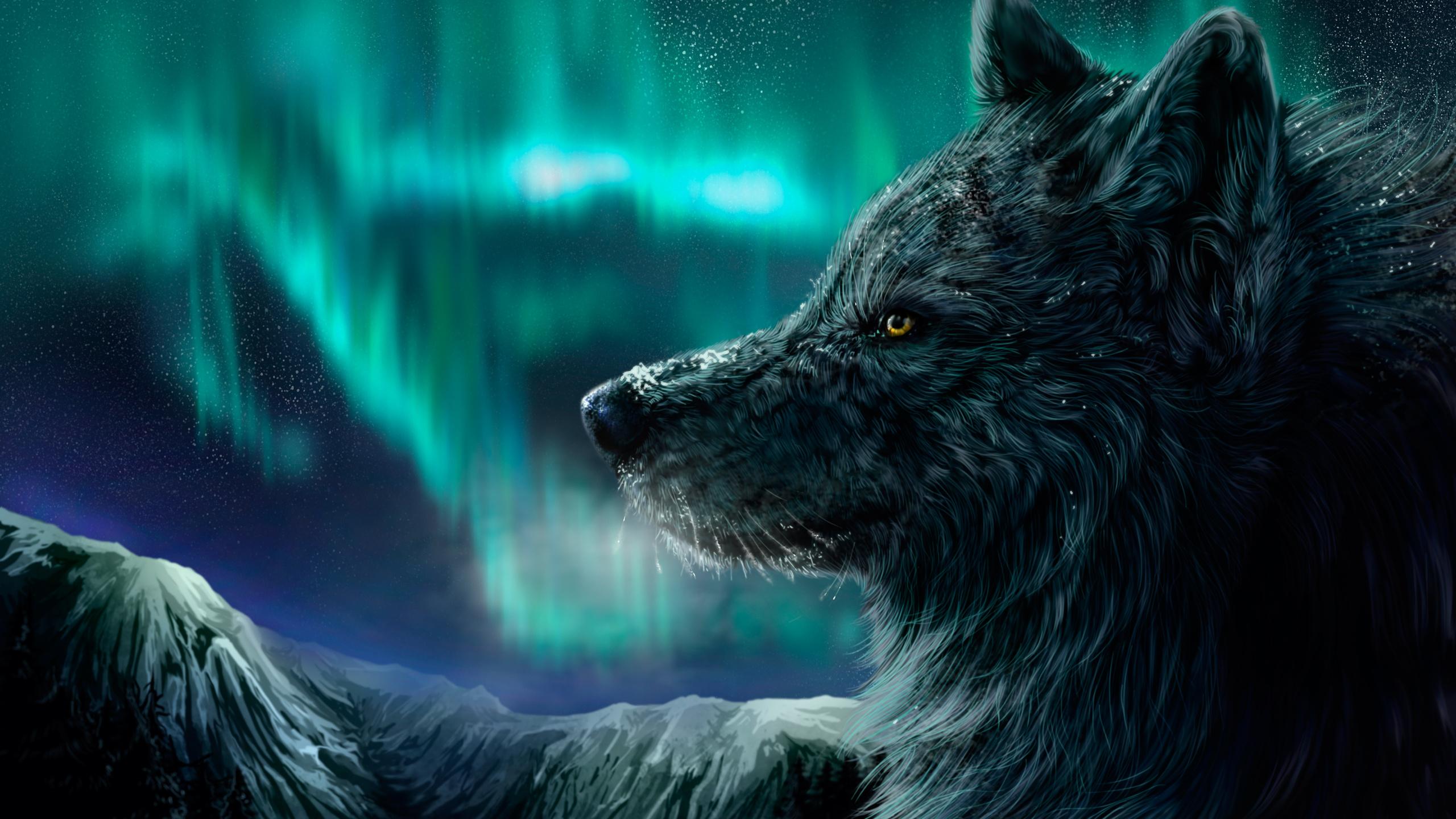 картинки про волков для обоев достоинства, квартиры таких