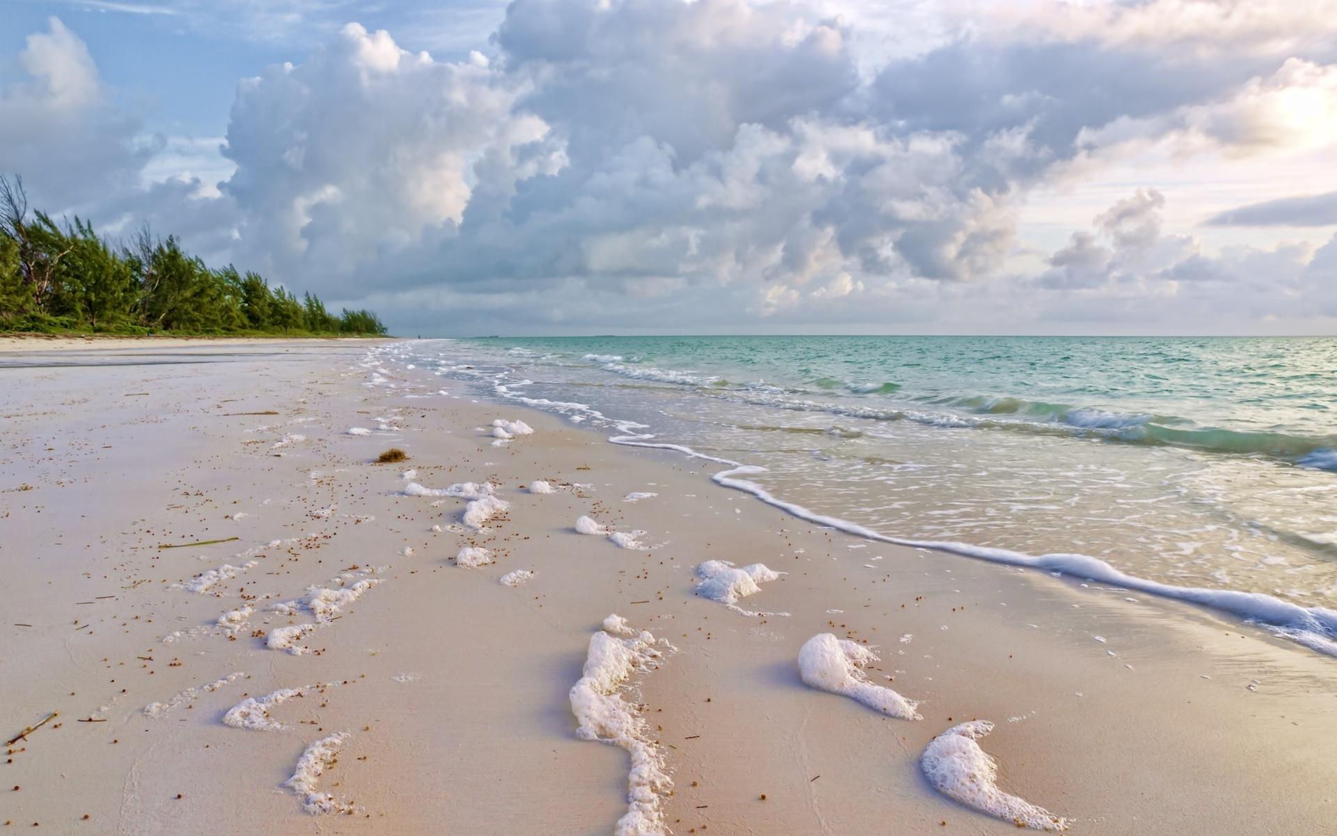является картинки песчаного берега и океана брынцалов сделал несметное