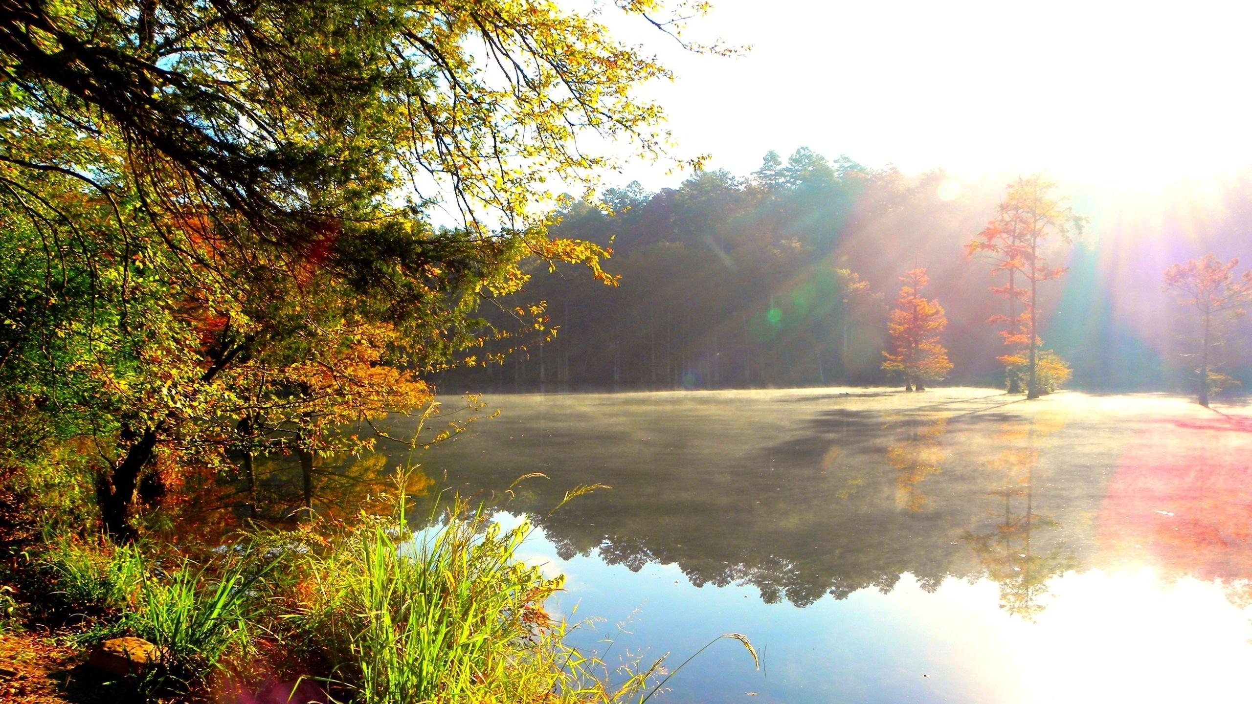 Картинки природы с добрым утром, картинки