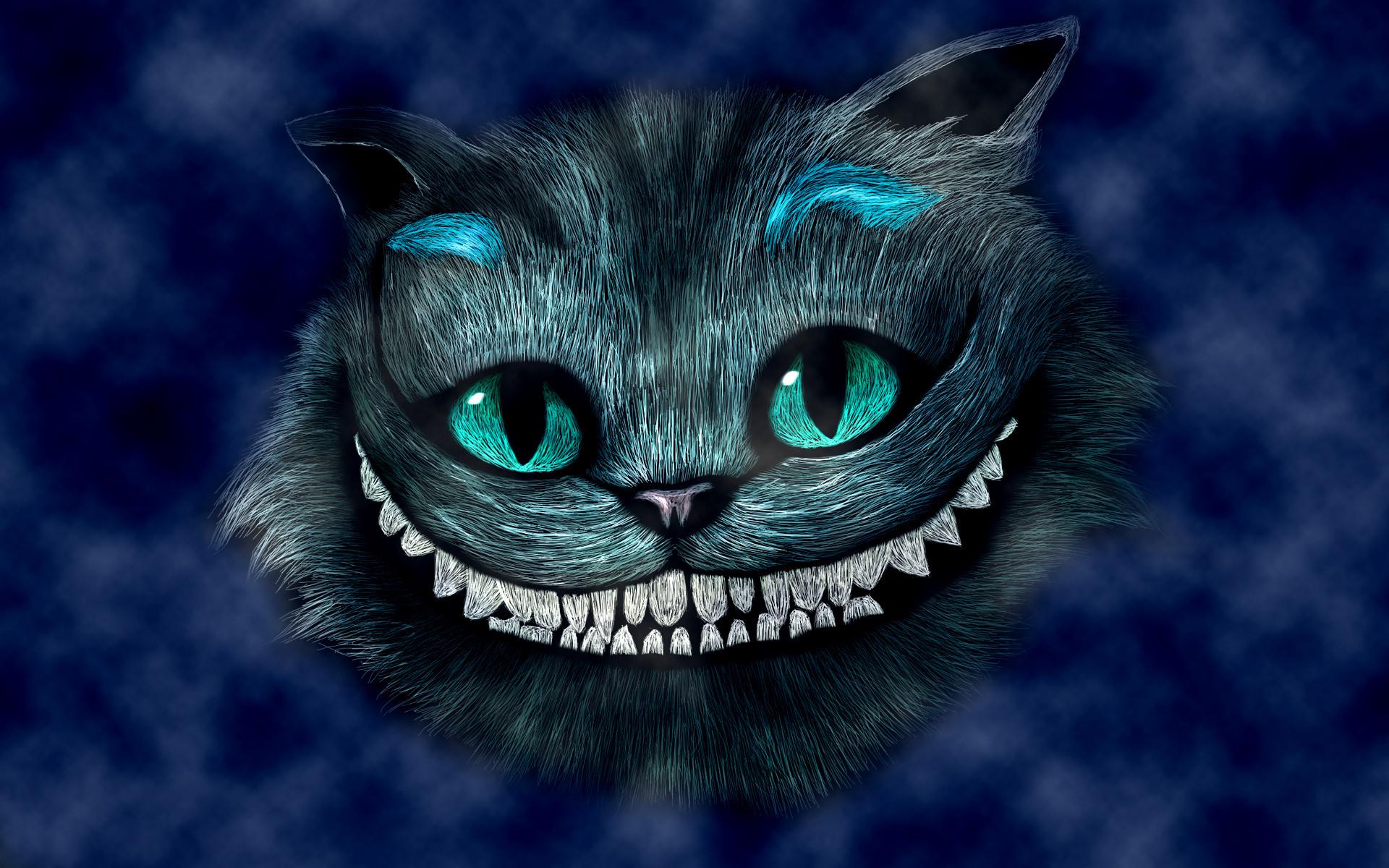 картинка кот улыбка картинки