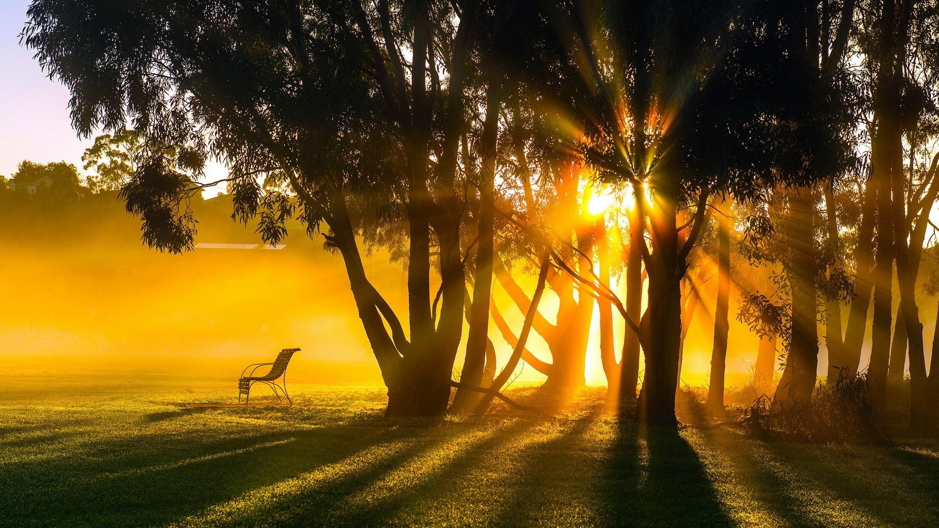цепочка умиротворяющие картинки с добрым утром которые входят состав