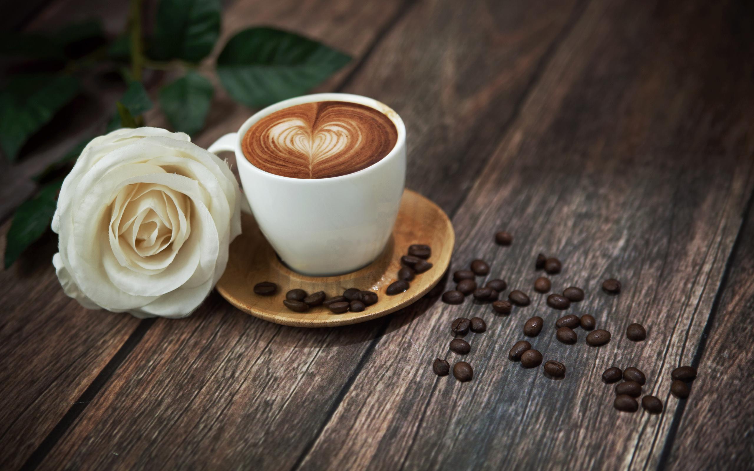 Картинки цветы и кофе красивые, картинки