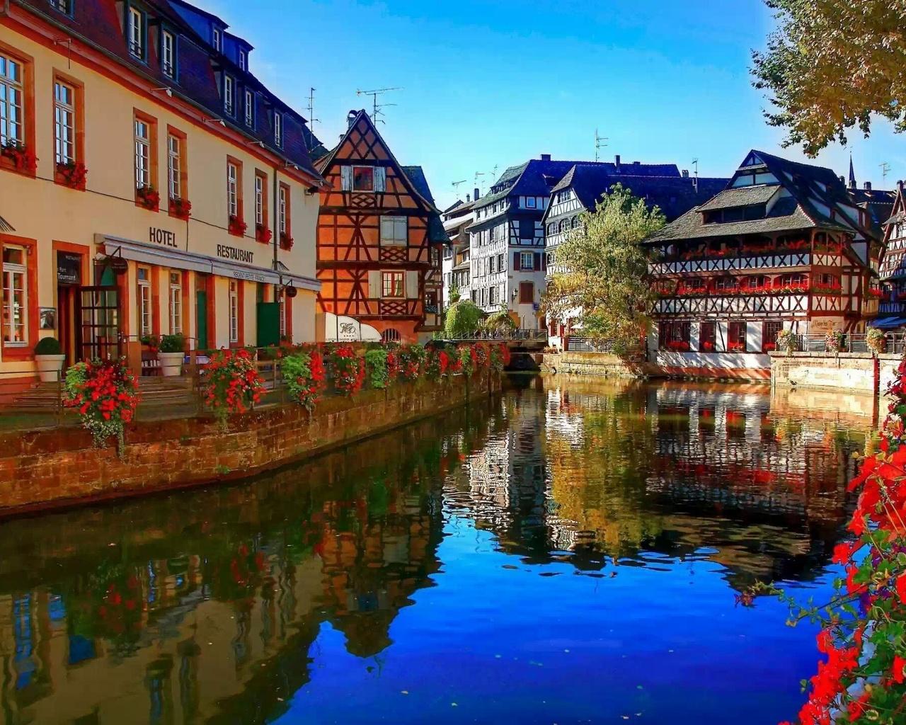 этом фотобанке города европы в картинках растения