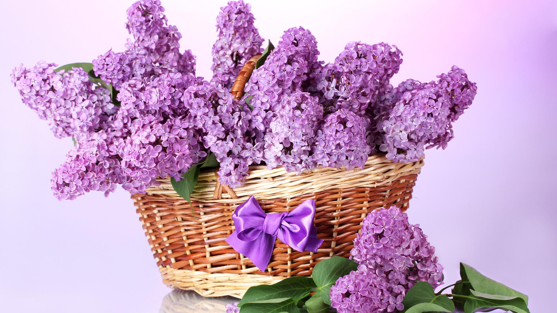 Цветы поздравление картинка, днем рождения ханума