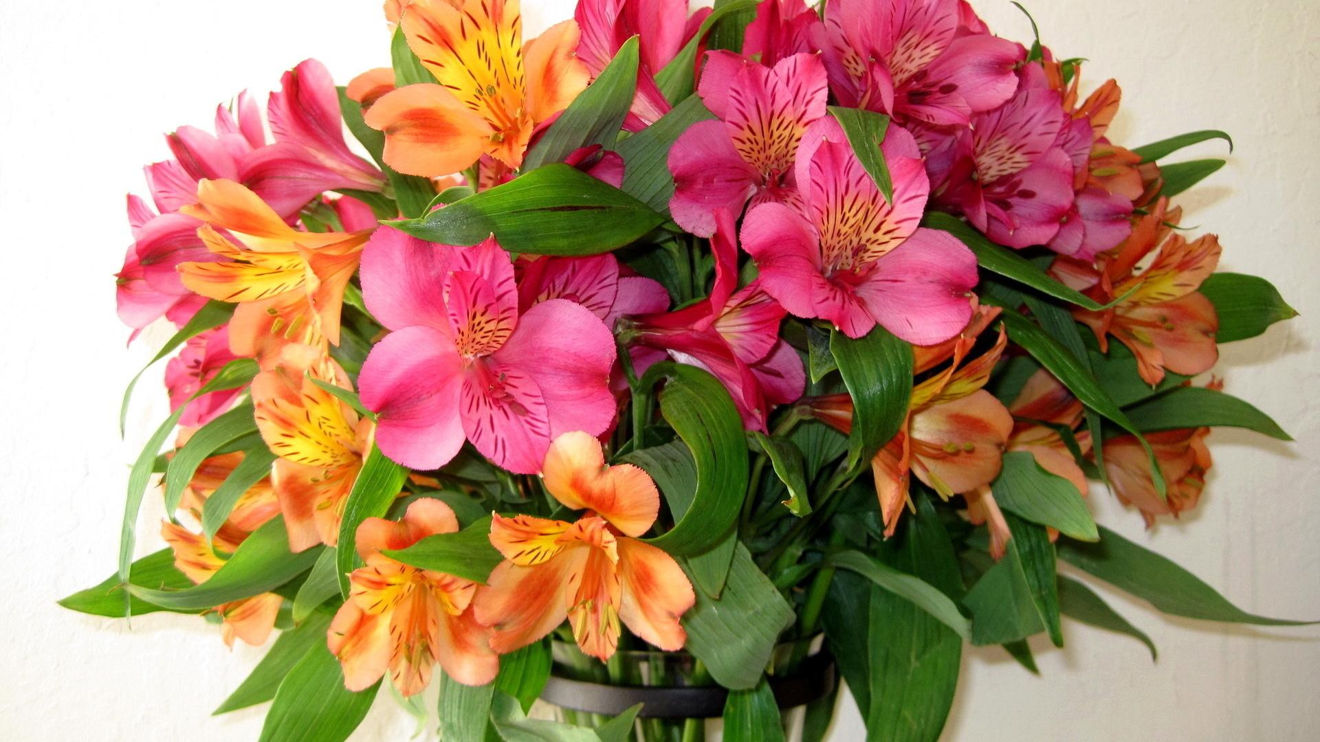 Картинки, цветы букет в картинках
