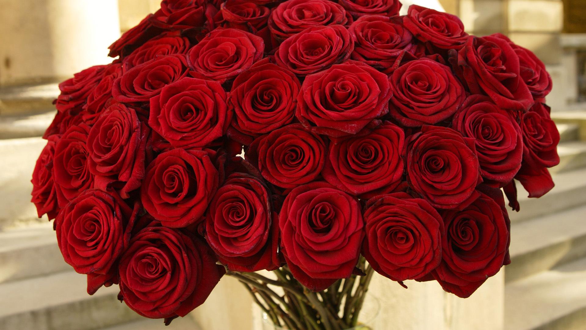 Картинка цветы роза, аву смешные мужские