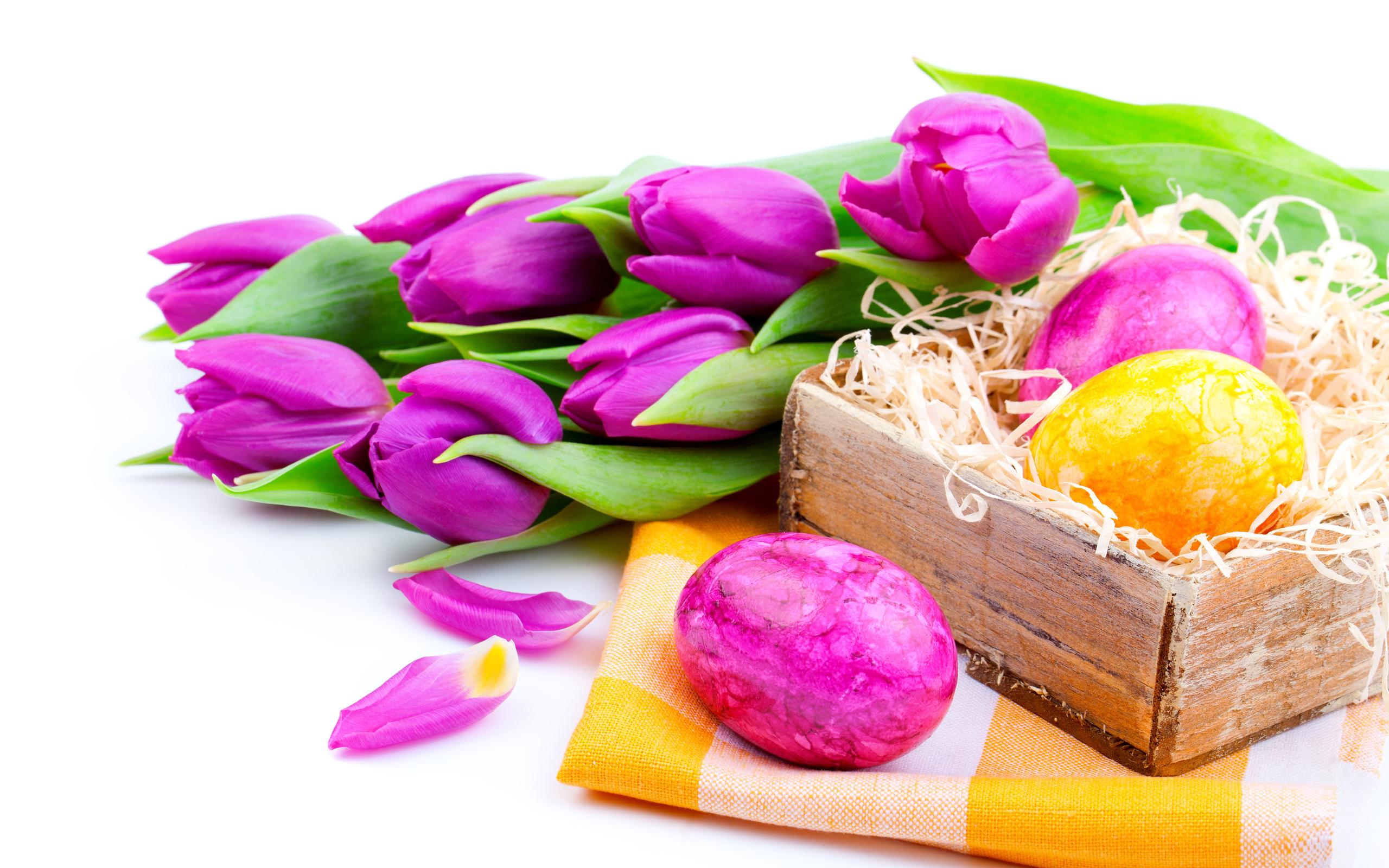 тюльпаны в коробке картинки на фоне полосатых обоев сиреневых расстояние оптимально
