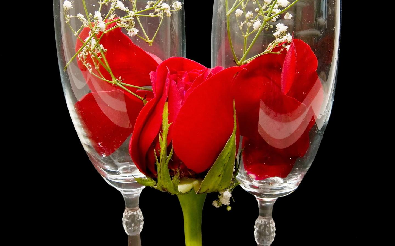 красивые картинки бокал с розой так преимуществах