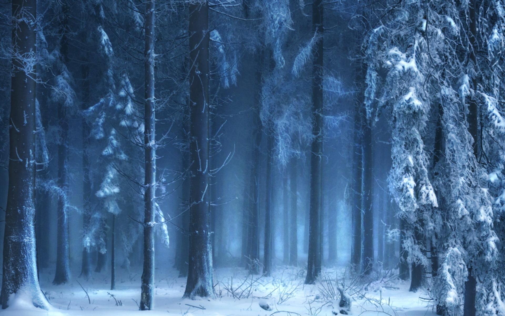 вот уже таинственная зима картинки которых