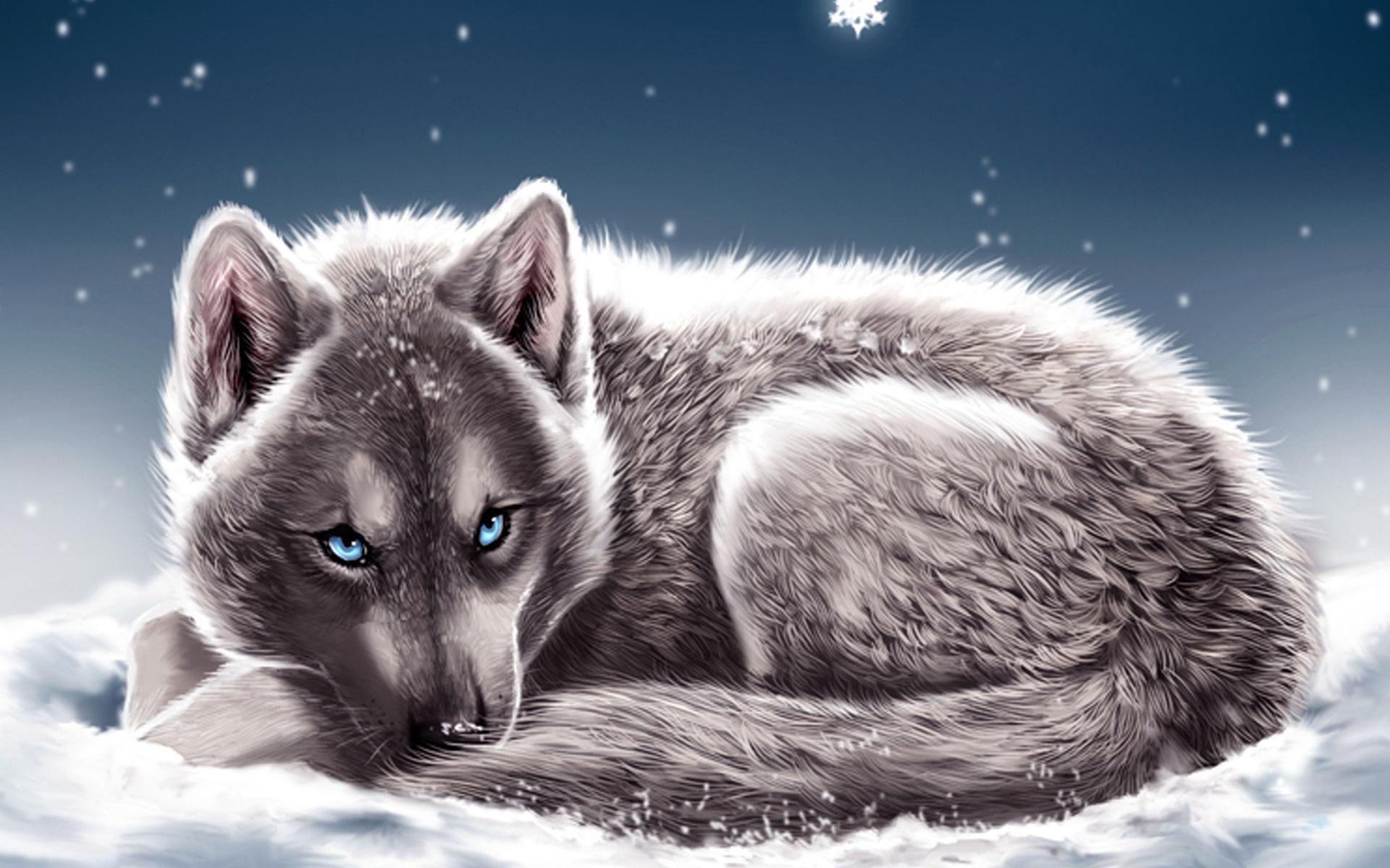 картинки голубоглазых волков заказы минимальные