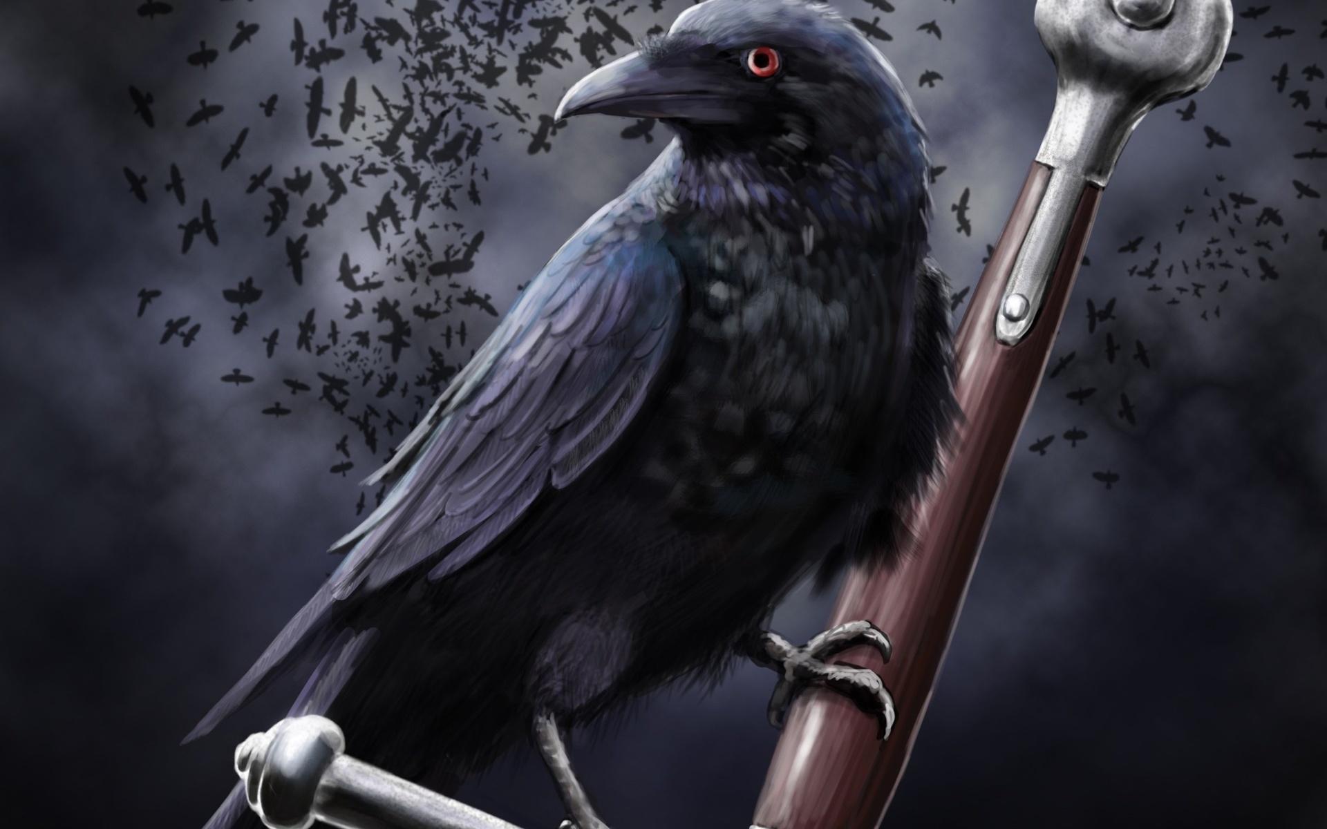 Девушке красоте, картинки с воронами арты