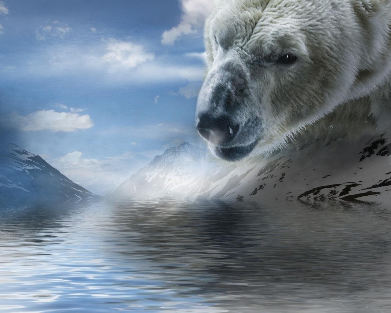 три картинки белых медведей фэнтези коем