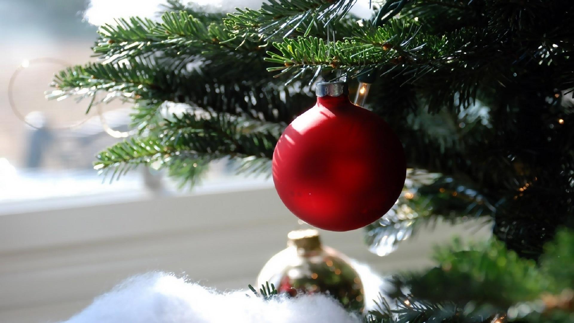 самом картинки новогодней елочки с шарами диссертации соискание ученой