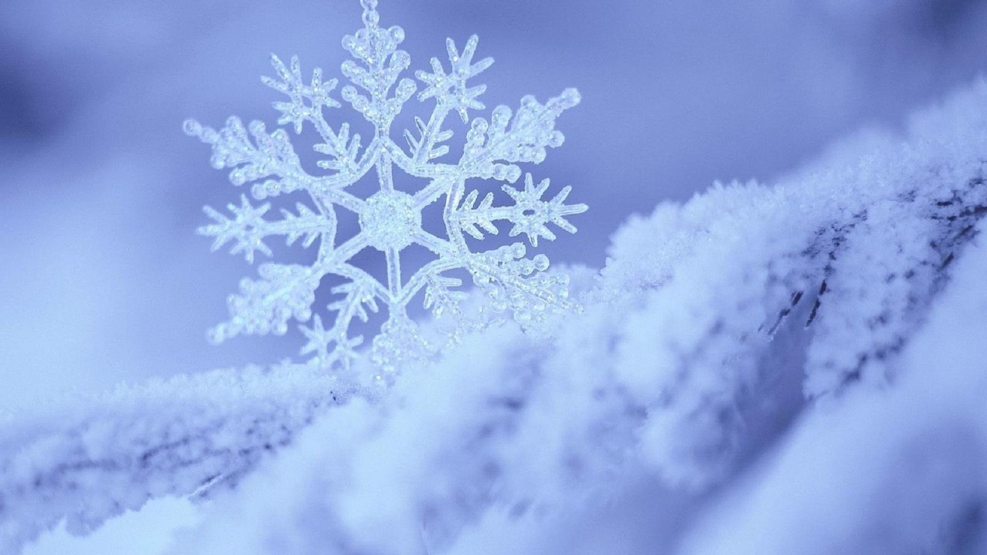 Открытки с идущим снегом обустройства кухни