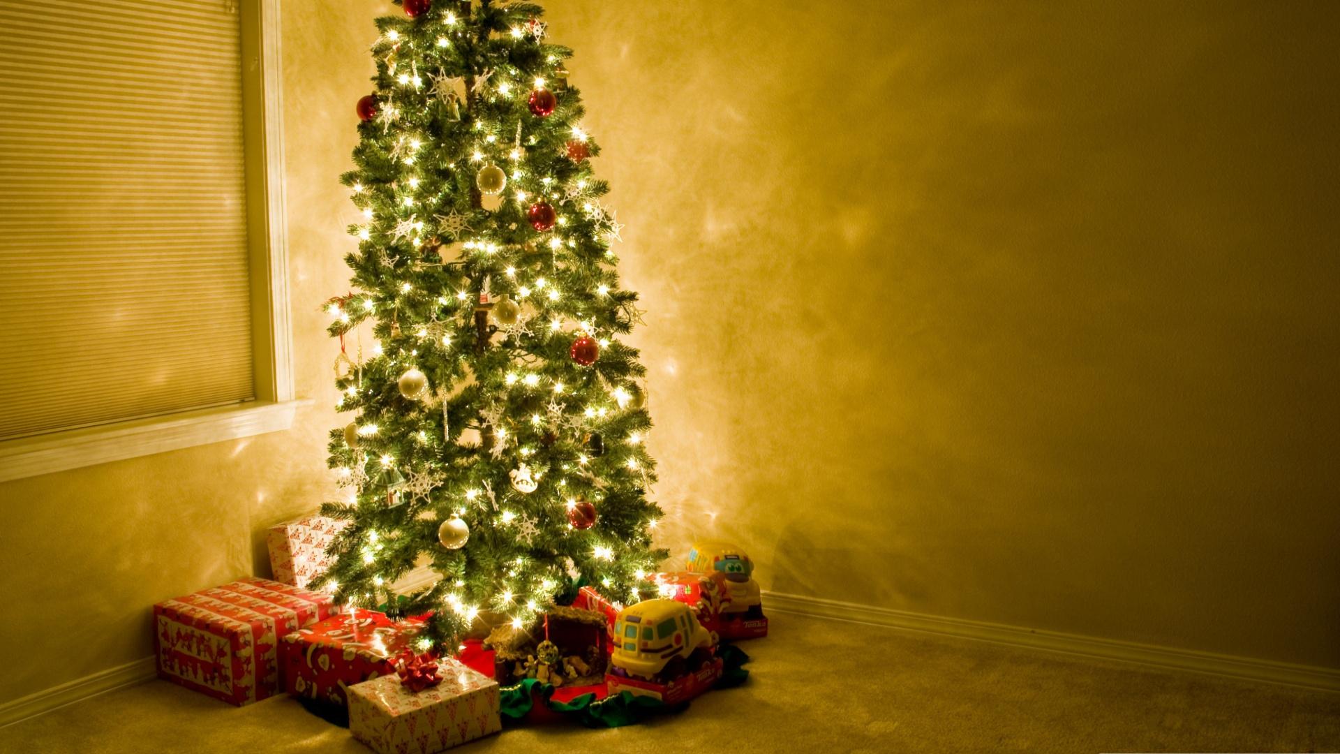 зависимости стадии картинка с елкой новогодней на потолке надо