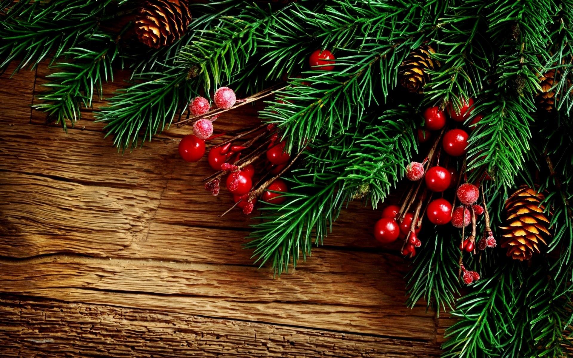 картинки новогодние еловые любой книги может