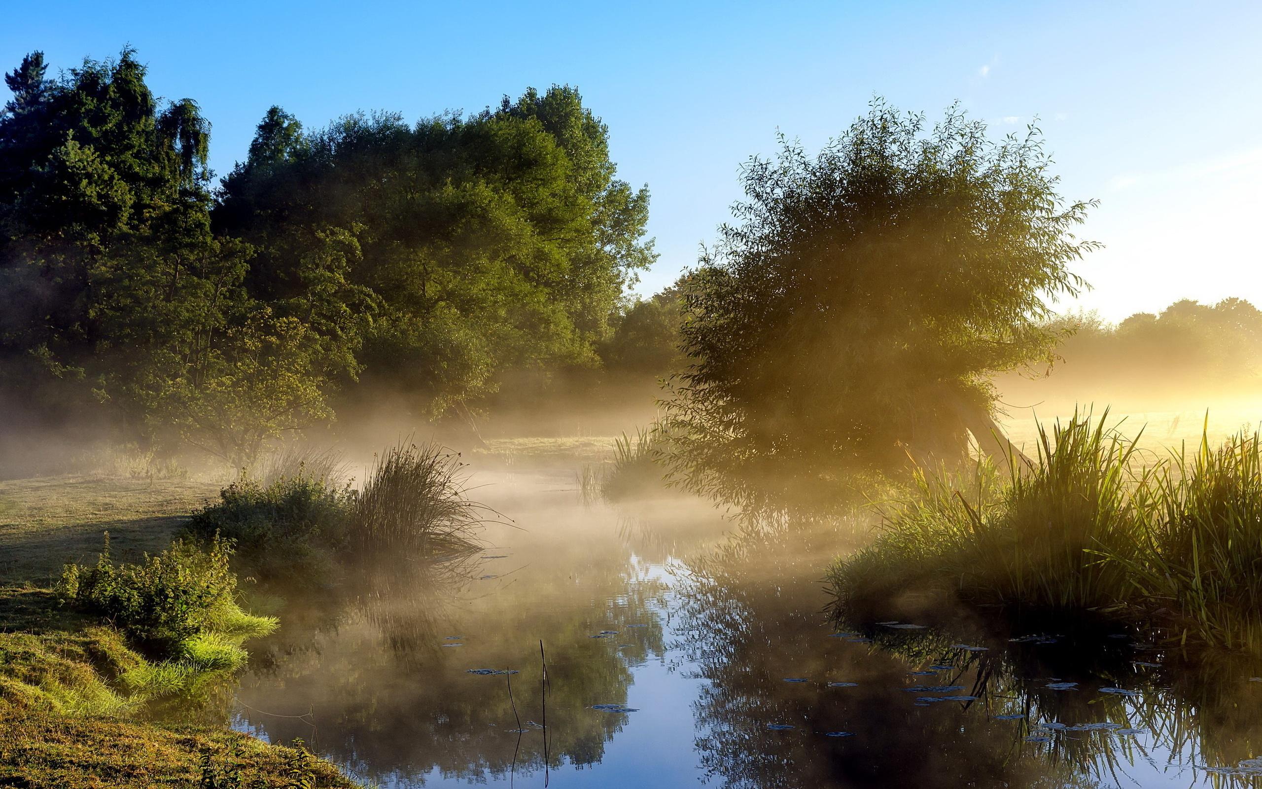 Красивые картинки утро на природе