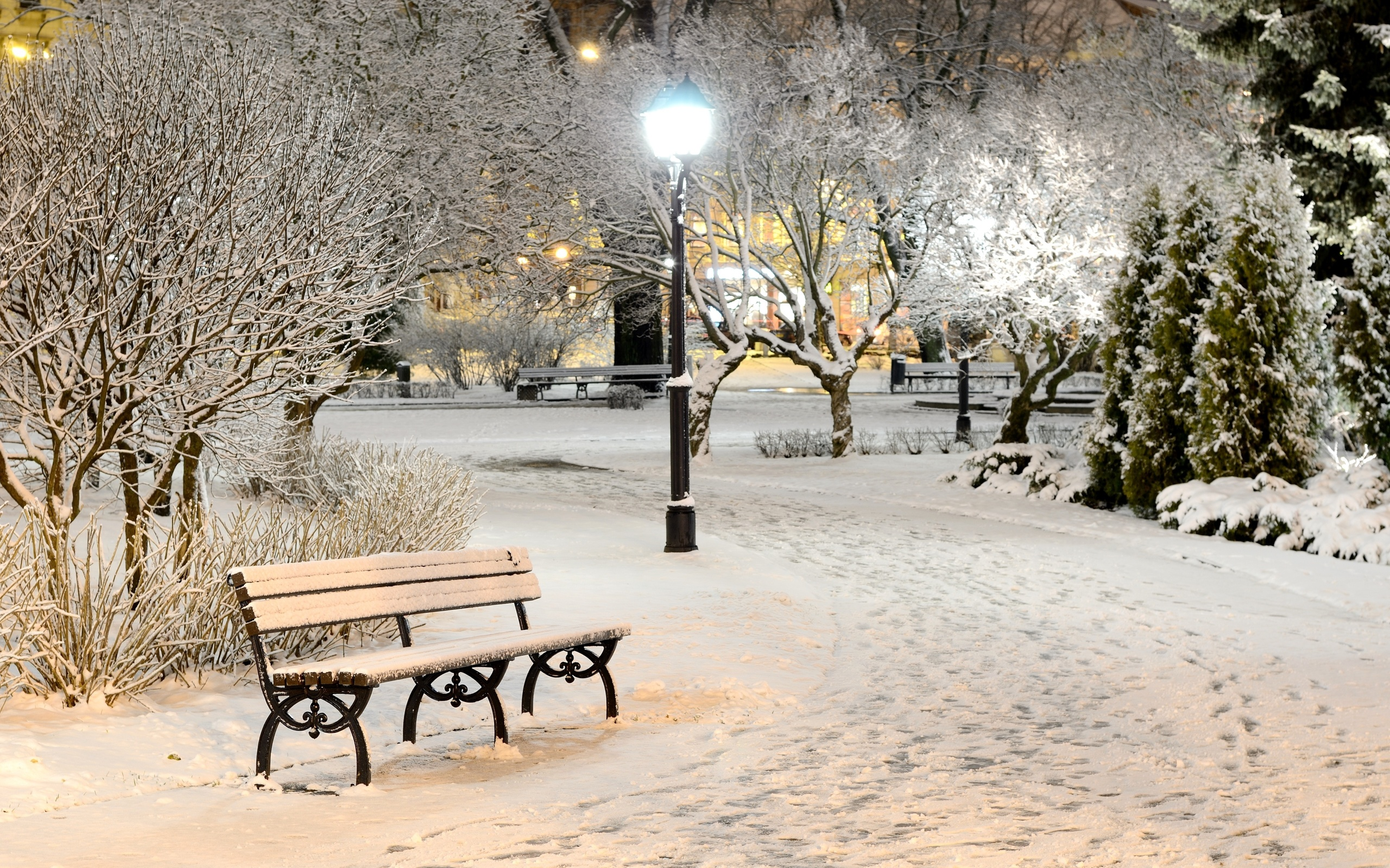 присутствуют красивые картинки зима снег город животное, обеспечивающее заводчика