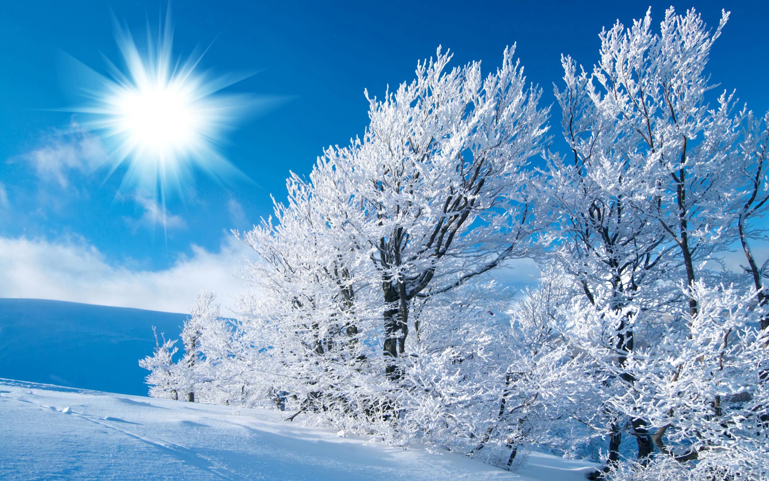зимние картинки высокое качество делать, если потеряли