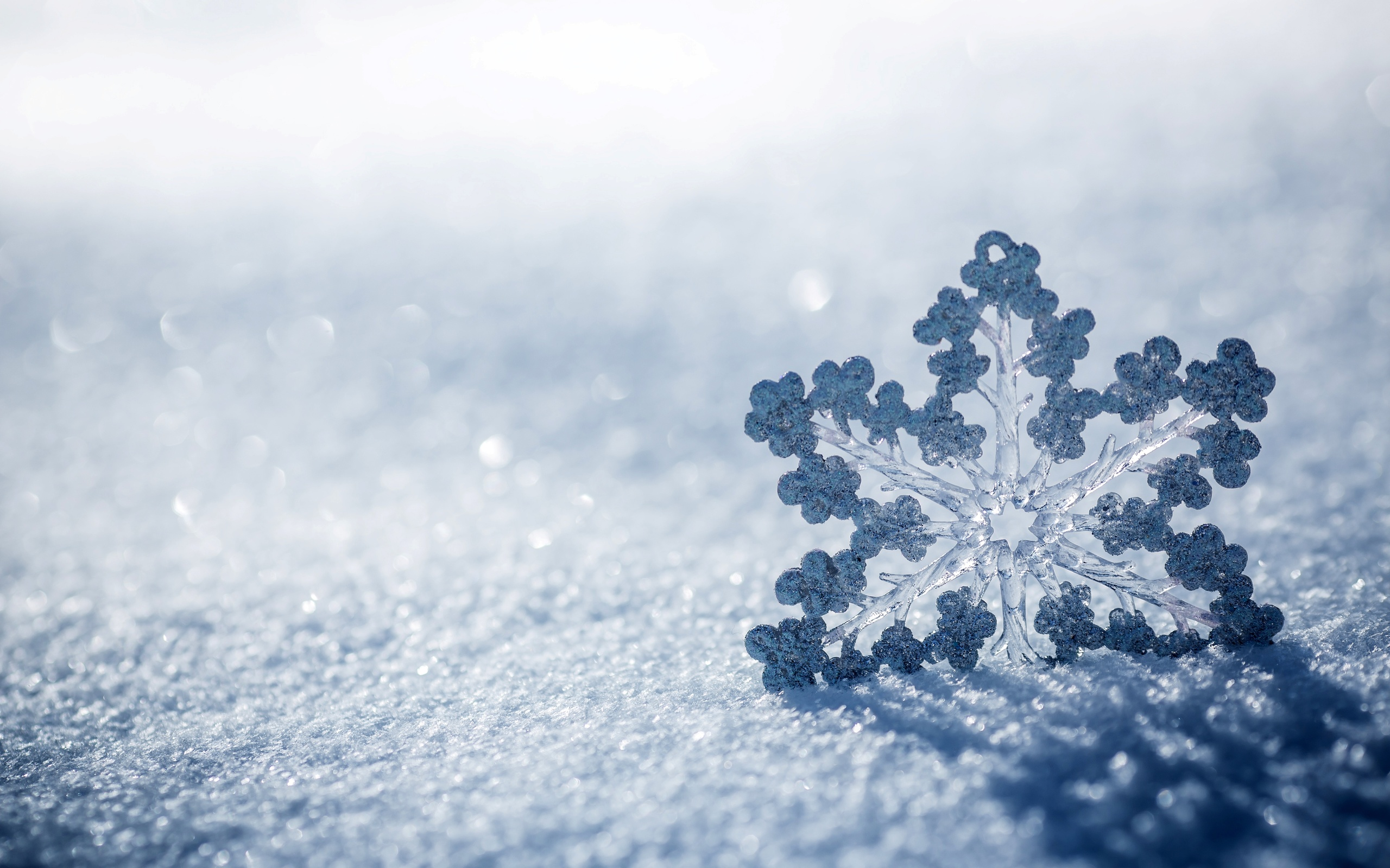 заявили картинка снежинки радости отбираем для вас